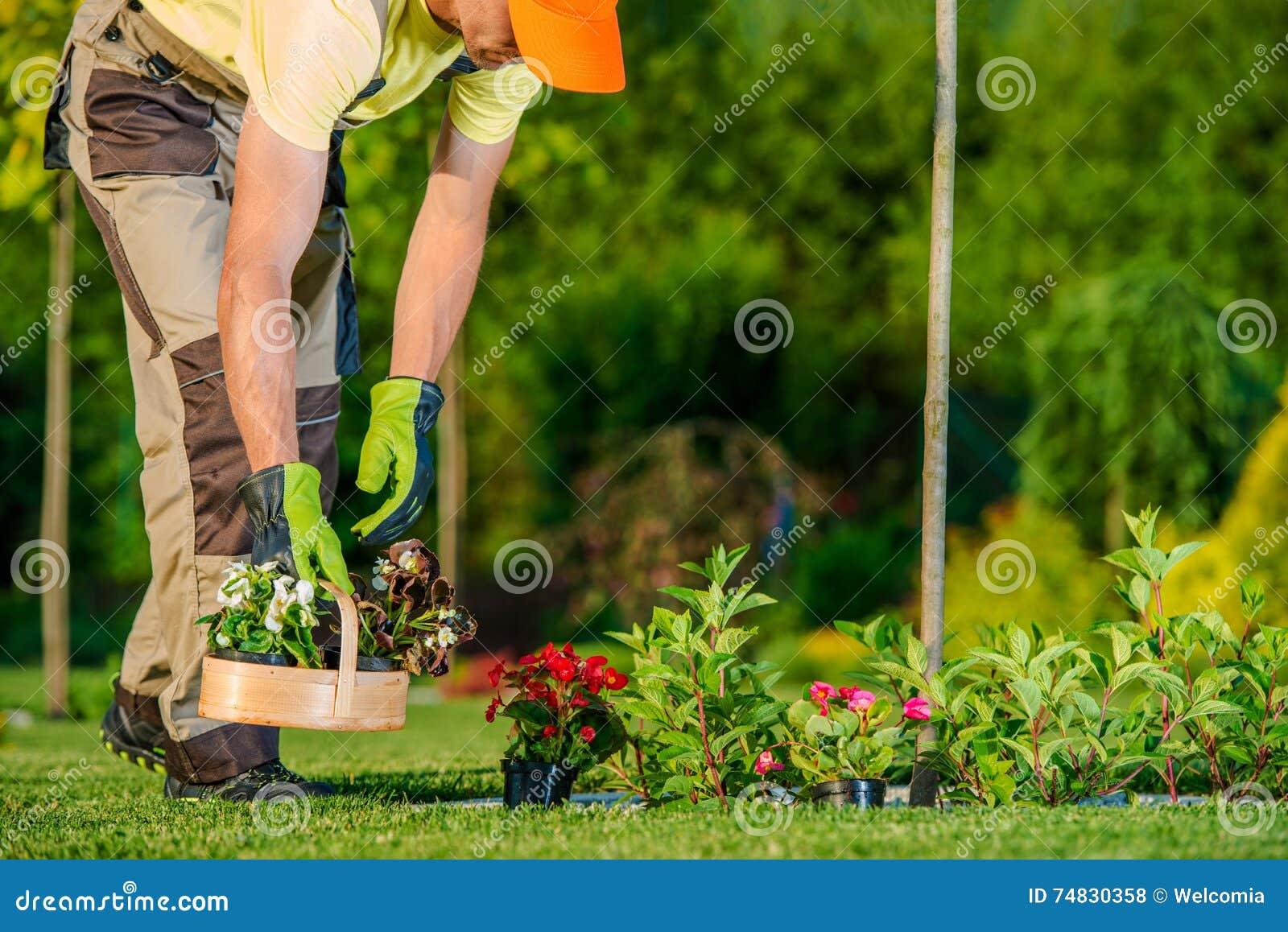 Jardinier plantant des fleurs