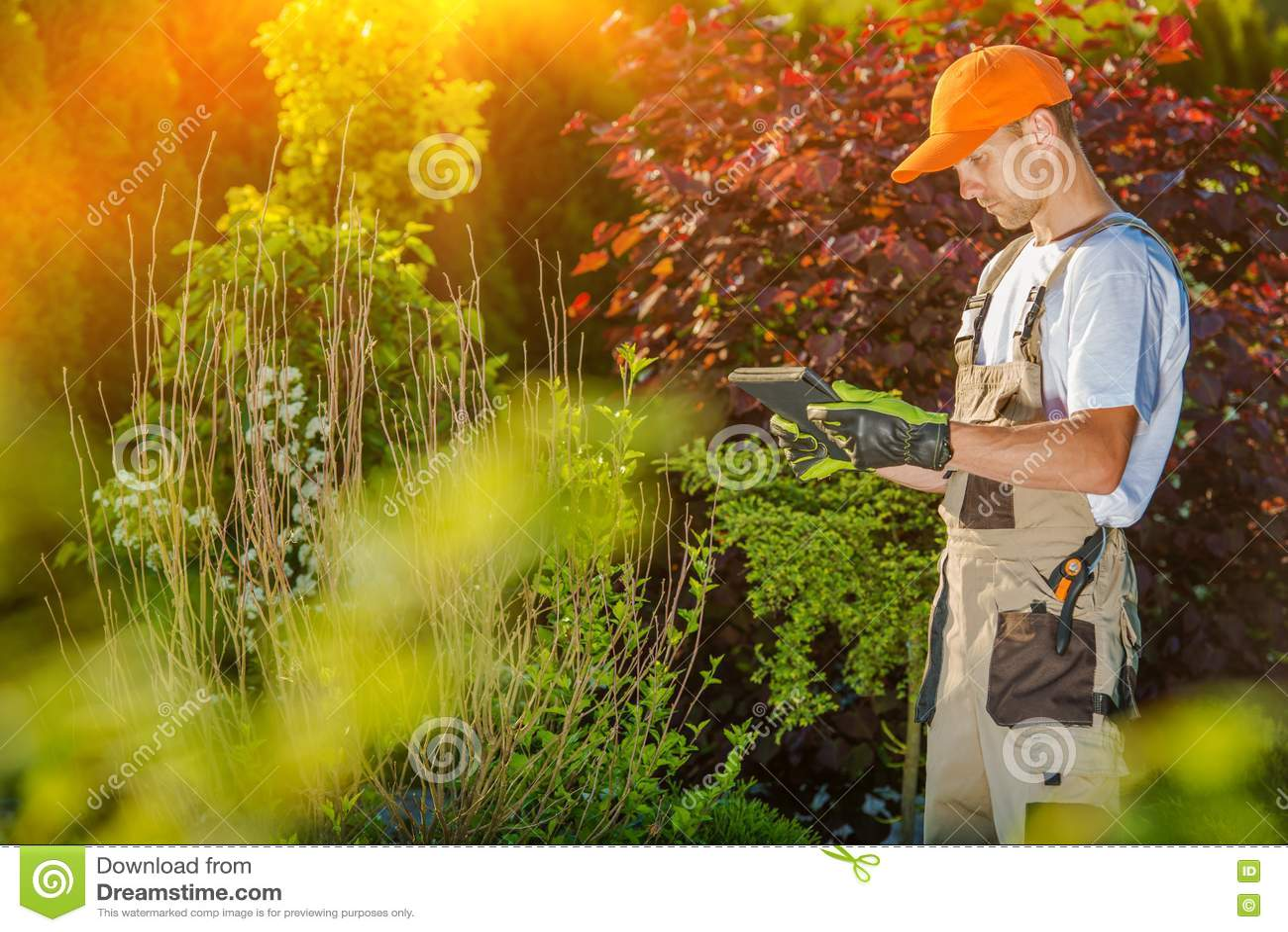 Jardinier Working sur la Tablette