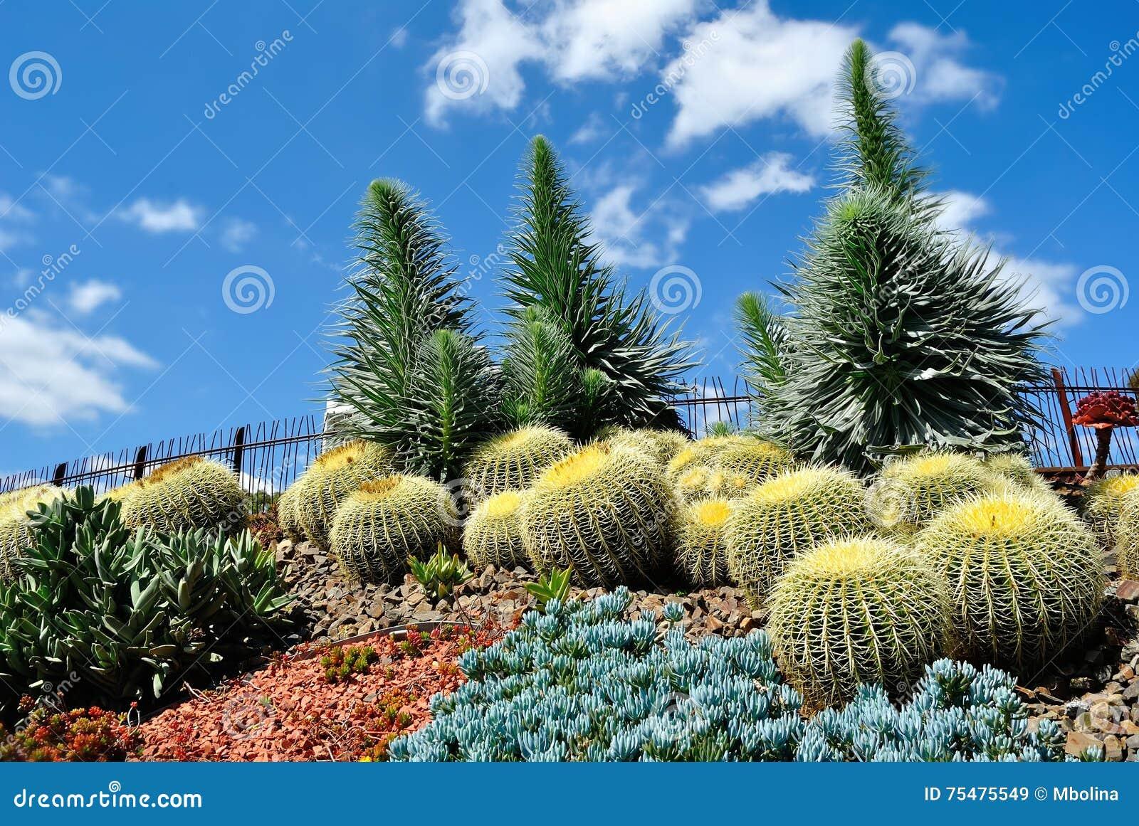 Jardins botânicos reais