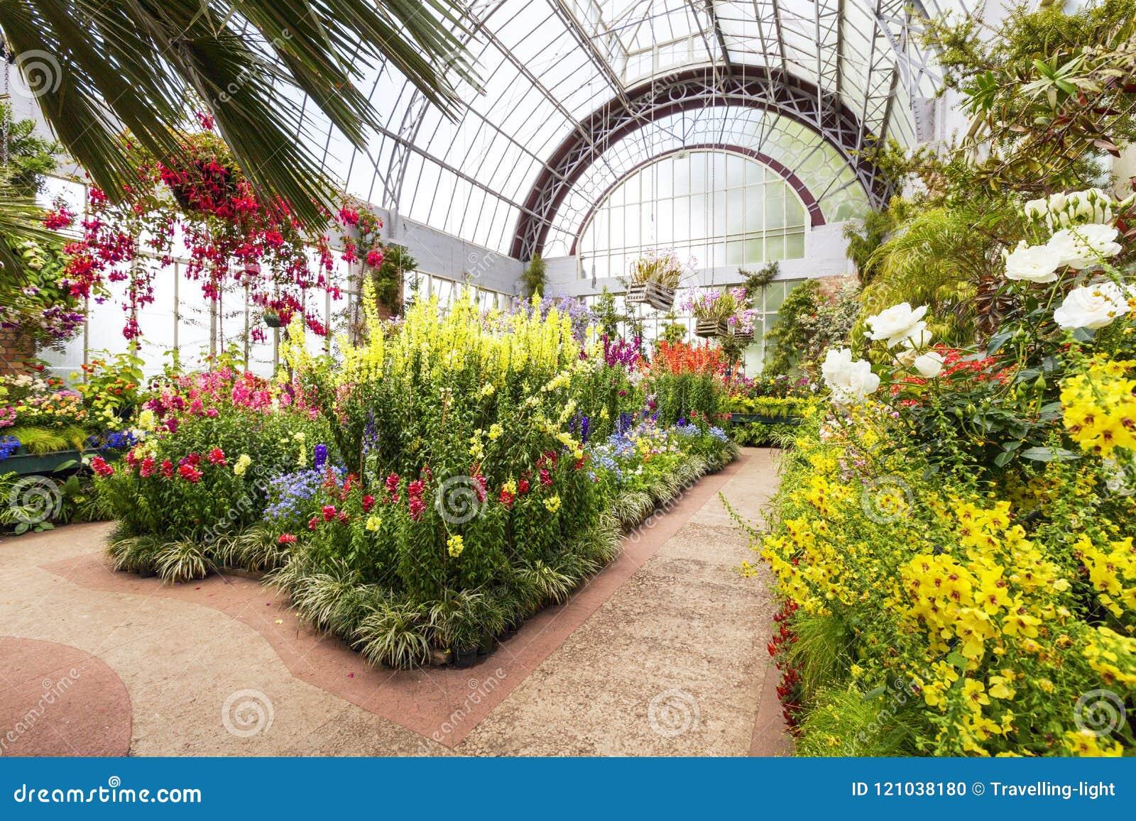 Jardins D\'hiver, Auckland, Nouvelle-Zélande Image éditorial - Image ...