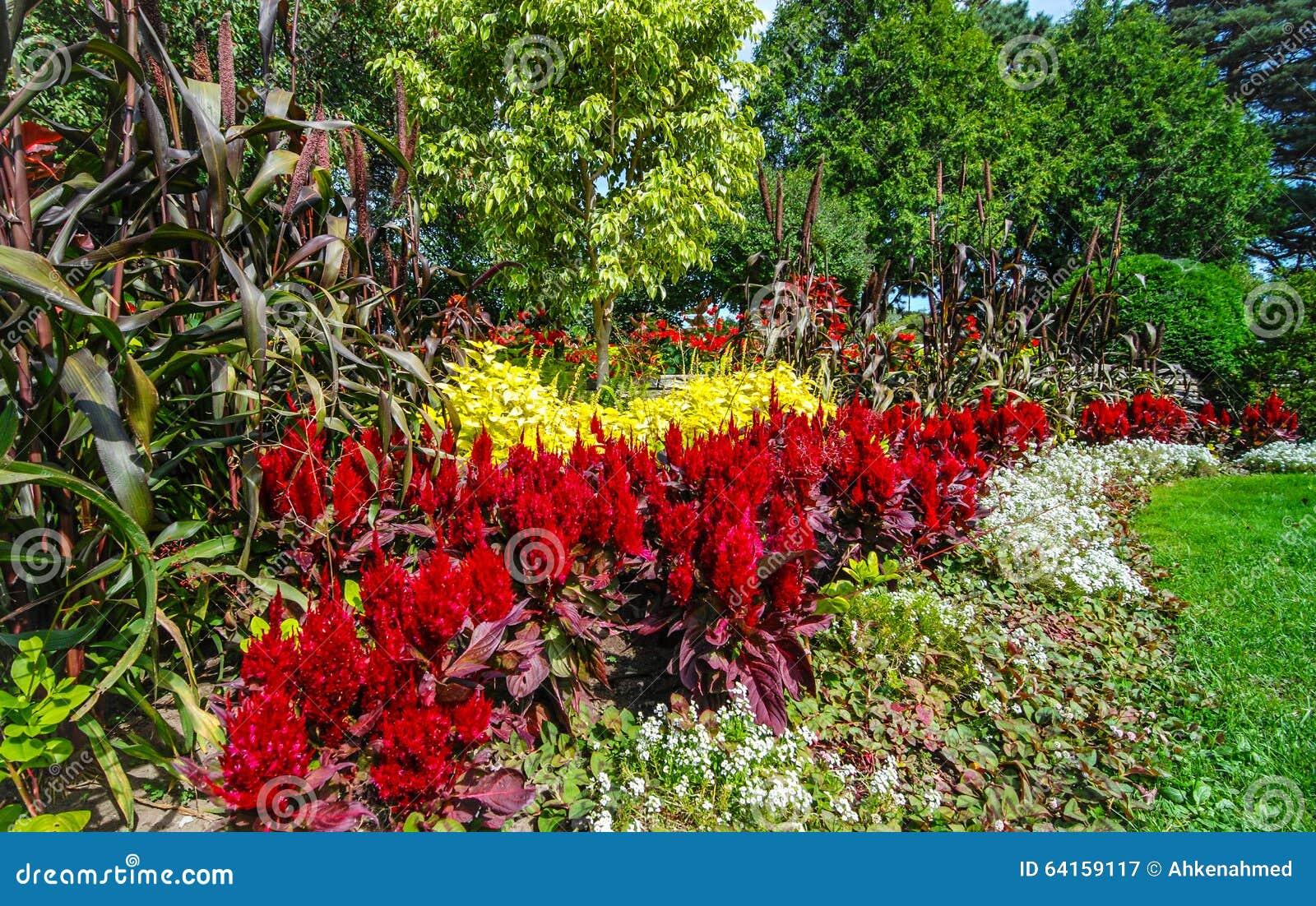Jardins De Couleur Variété De Fleurs De Ressort Image stock - Image ...