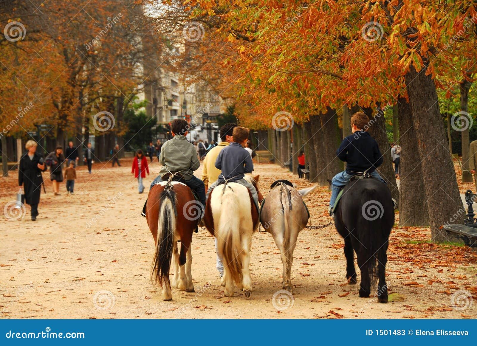 Jardins du luxembourg image stock image du c l bre vert - Jardin du luxembourg enfant ...