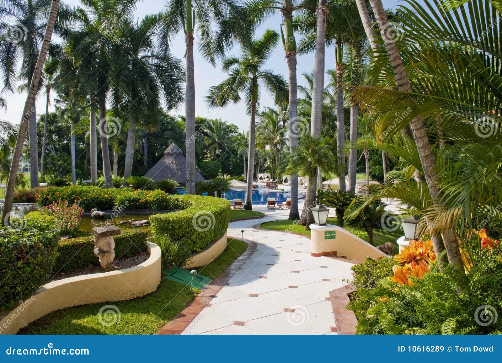 fotos jardins tropicais : fotos jardins tropicais:Jardins Tropicais Ajardinados Imagens de Stock Royalty Free – Imagem