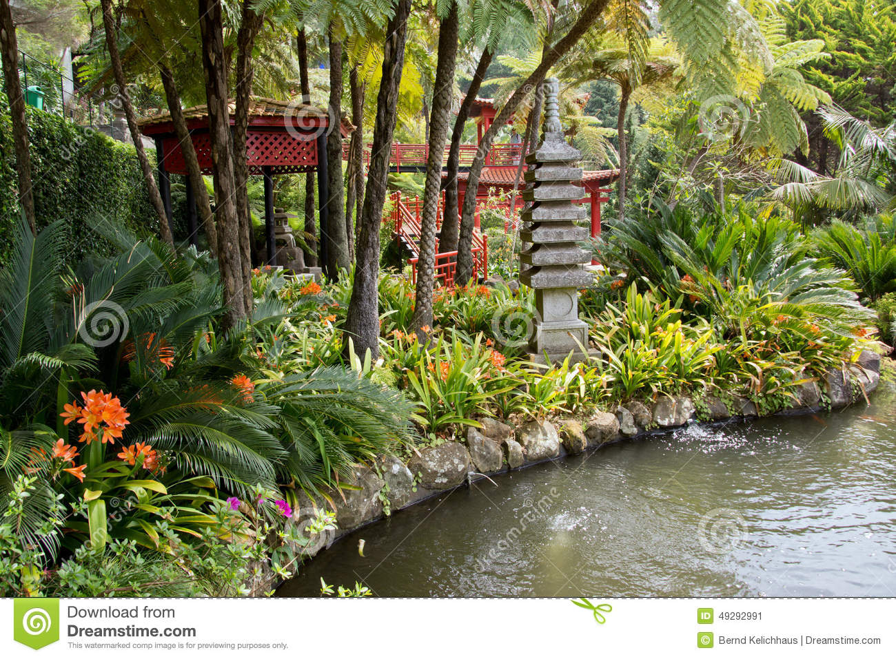 Jardins tropicaux en monte palace photo stock image for Jardins tropicaux contemporains