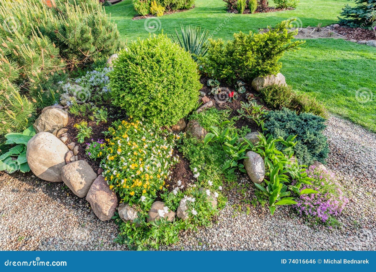 Jard n ajardinado del verano con las plantas verdes rocas - Plantas de jardin ...