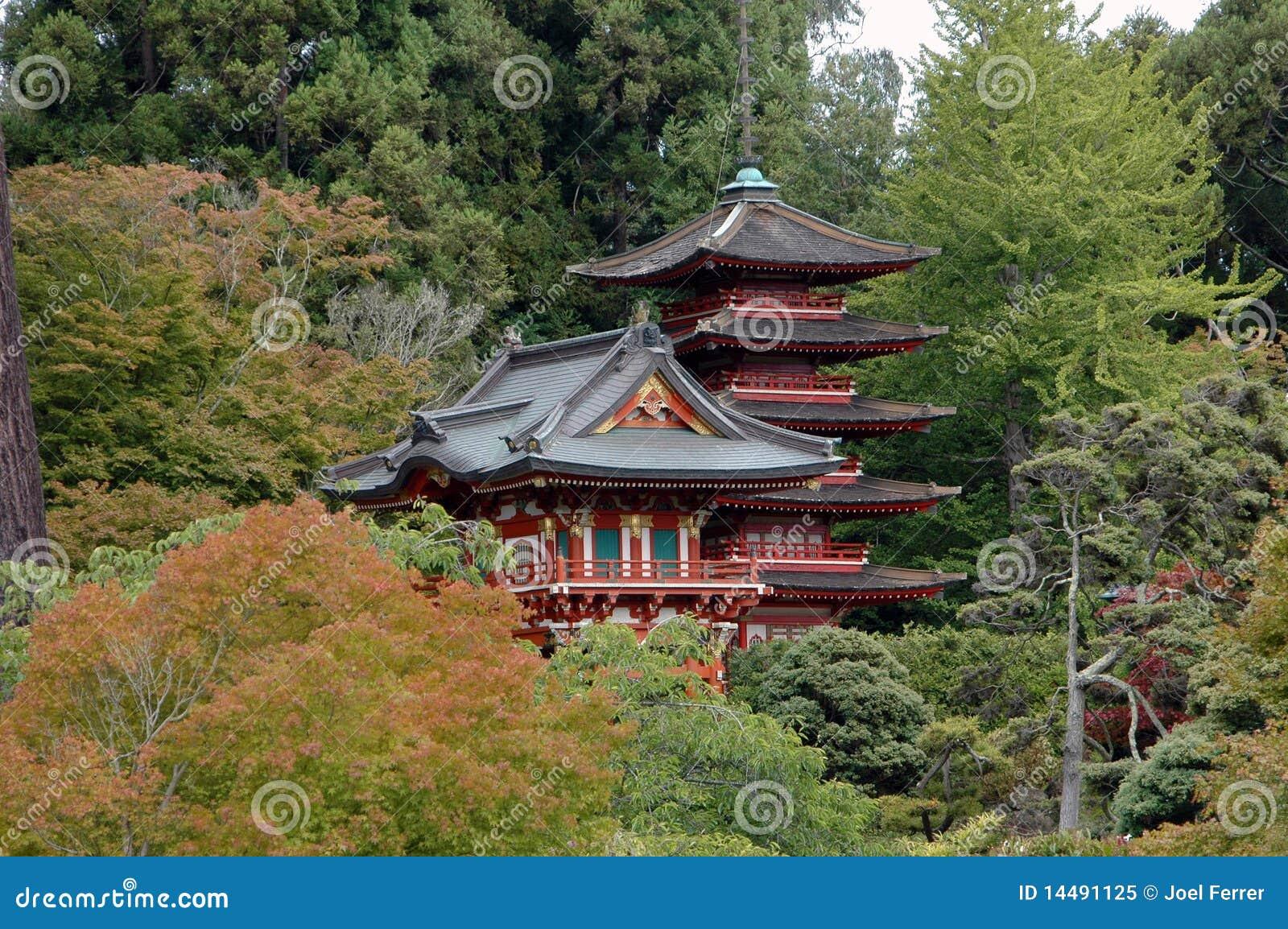 Jard n de t japon s san francisco foto de archivo libre for Jardin japones hagiwara de san francisco