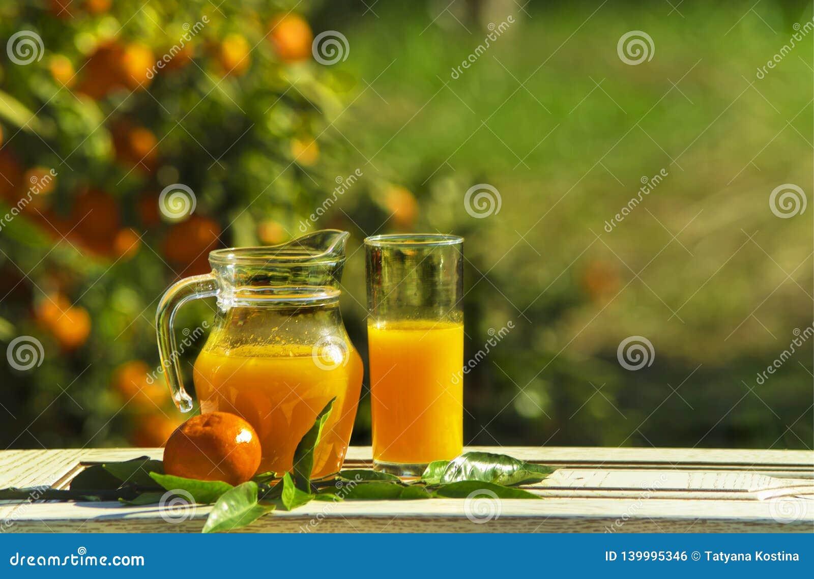 Jarro e vidro da composição com suco e tangerine em uma tabela de madeira branca na perspectiva do jardim da tangerina no