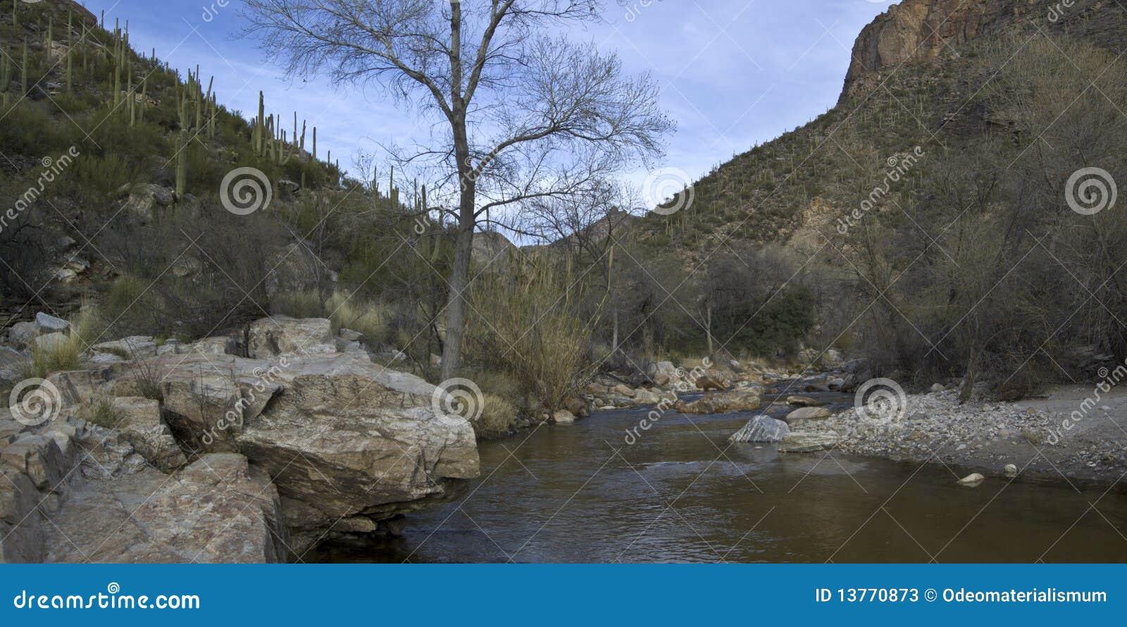 Jaru zatoczki panoramiczny częściowy sabino
