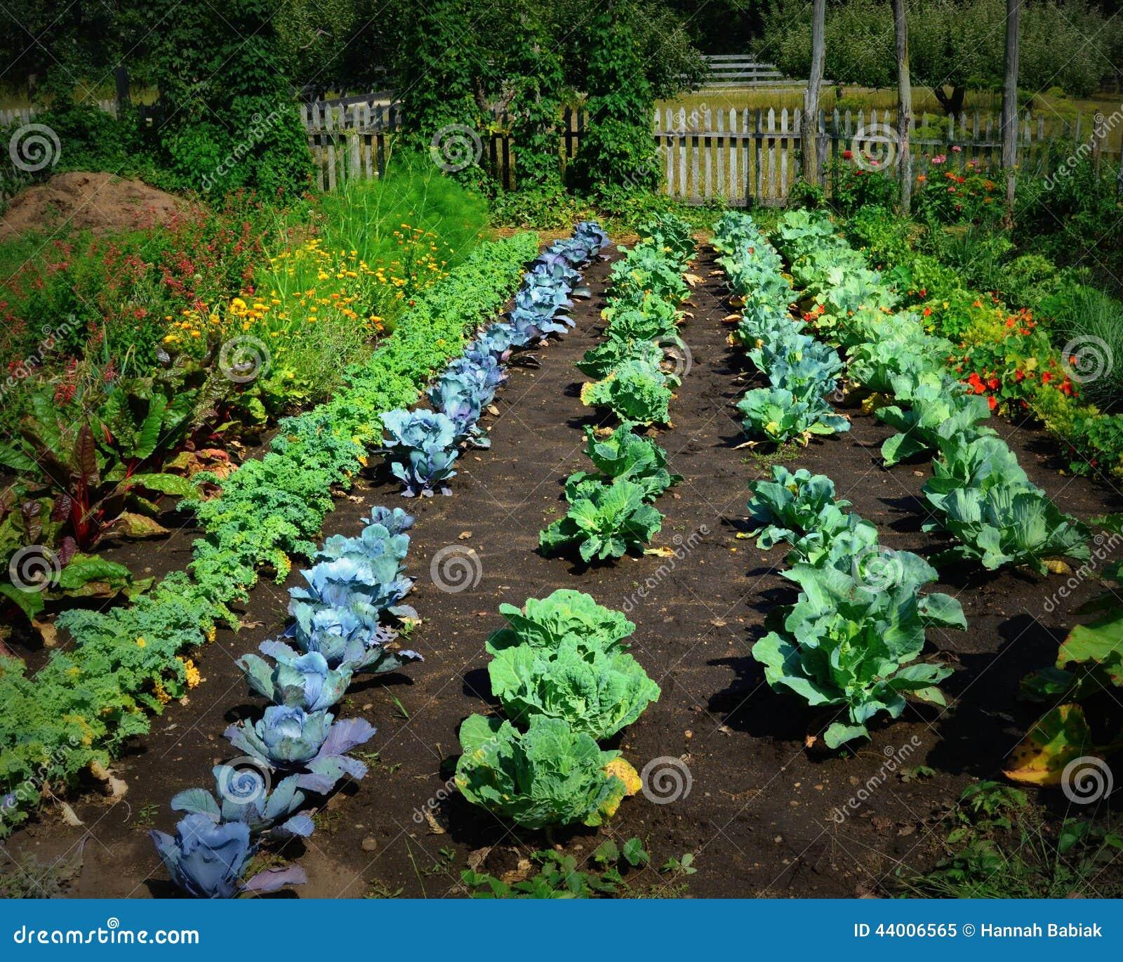 Jarzynowy ogród przy starym światem Wisconsin