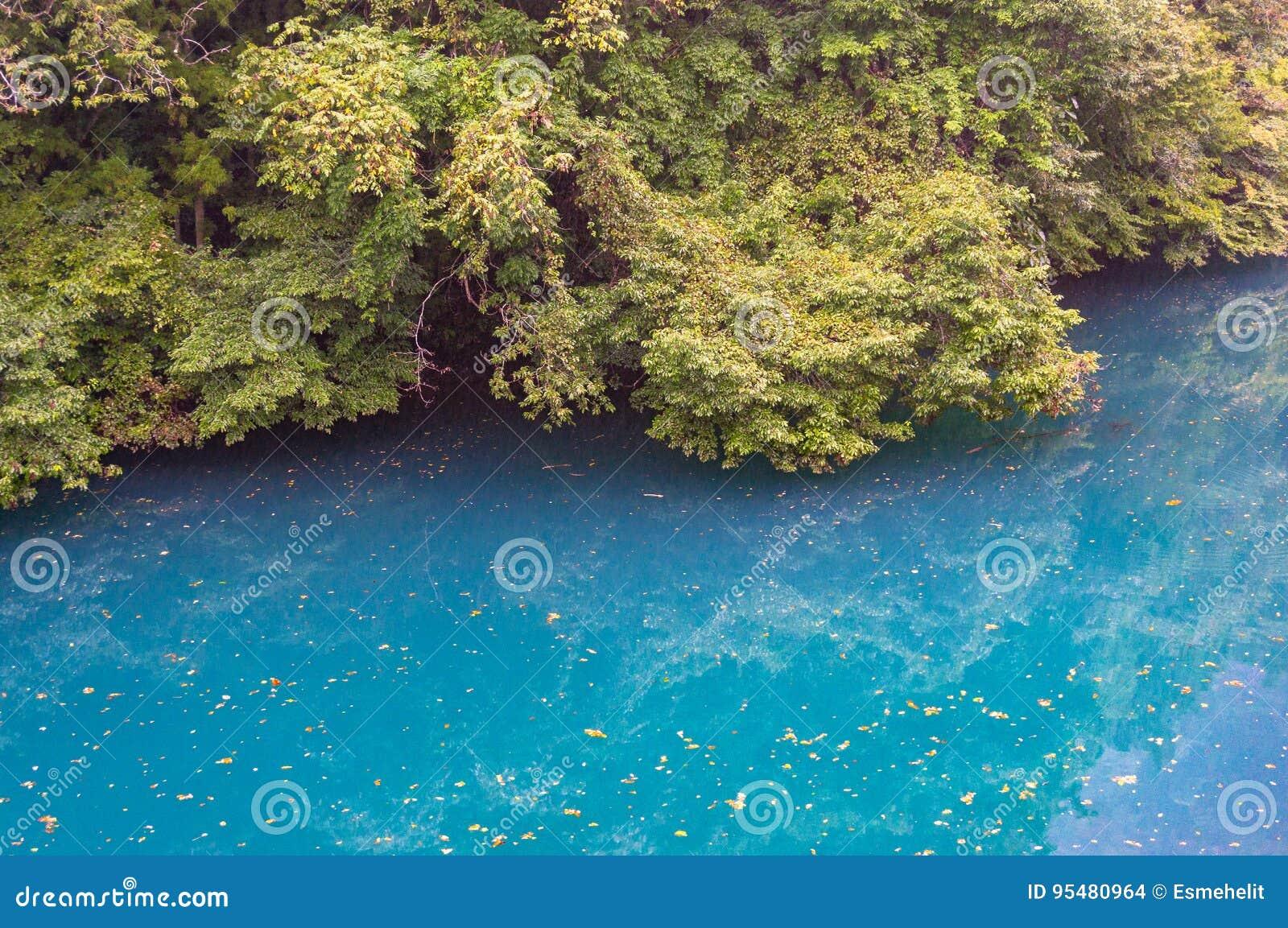 Jaskrawa błękitne wody lasowy jezioro