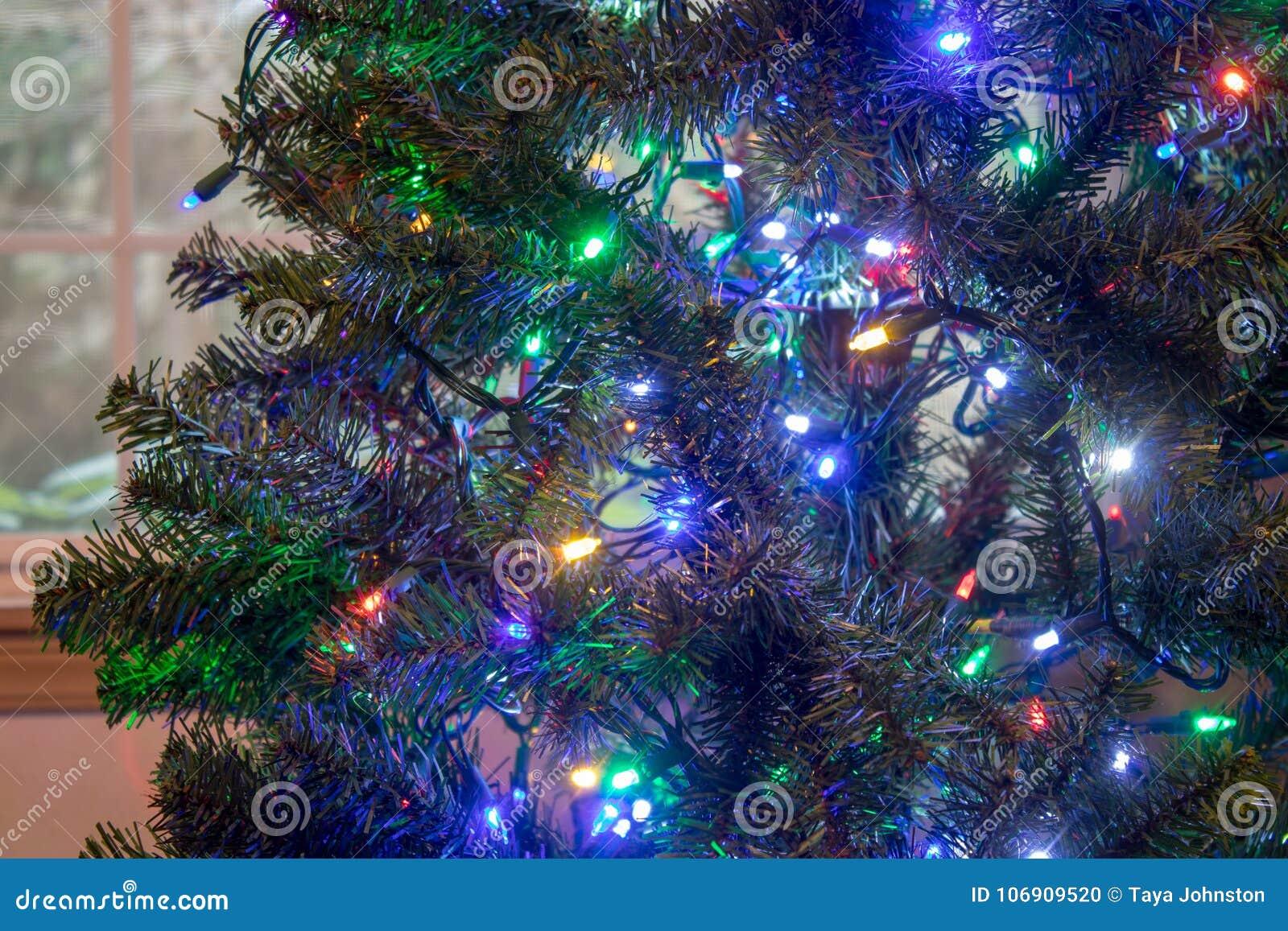 Jaskrawi bożonarodzeniowe światła wiesza w zielonym drzewie