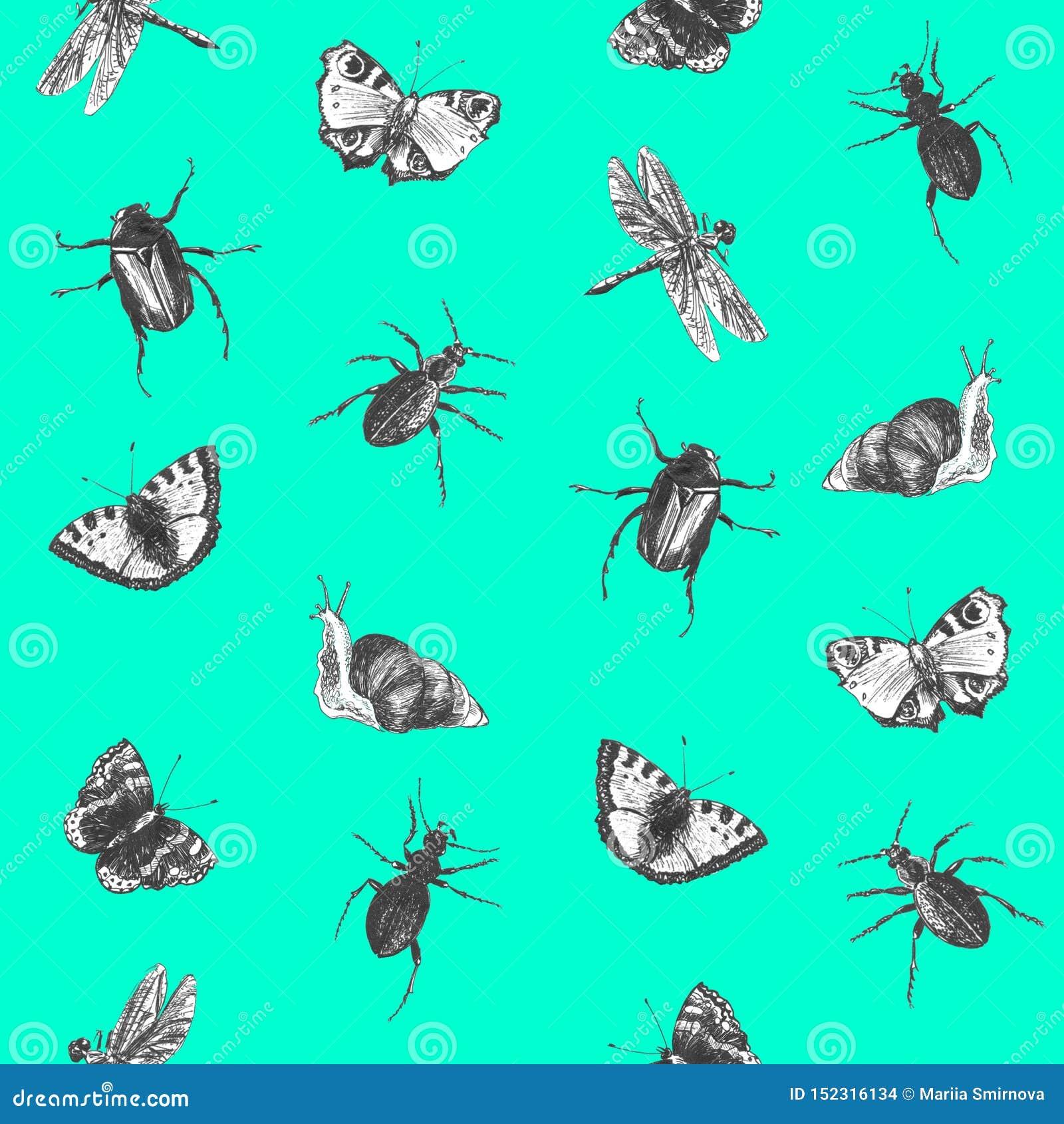 Jaskrawy bezszwowy zieleń wzór z motylami, ścigami i dragonflies,