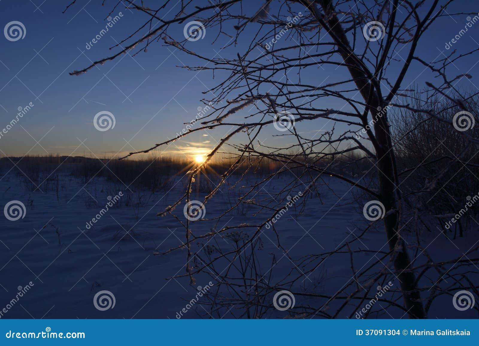 Download Jaskrawy brzask zdjęcie stock. Obraz złożonej z słońce - 37091304