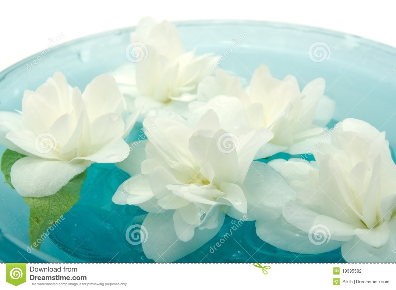 Jasmine flowers floating on water stock photography for Floating flowers in water