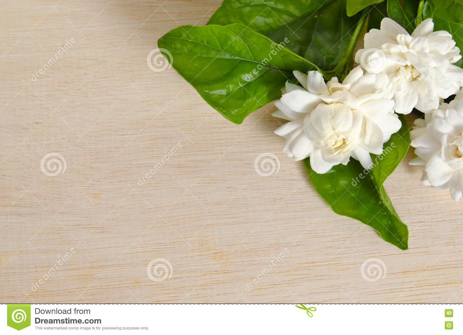 Jasmine flowers grouped on wooden board background stock photo jasmine flowers grouped on wooden board background izmirmasajfo