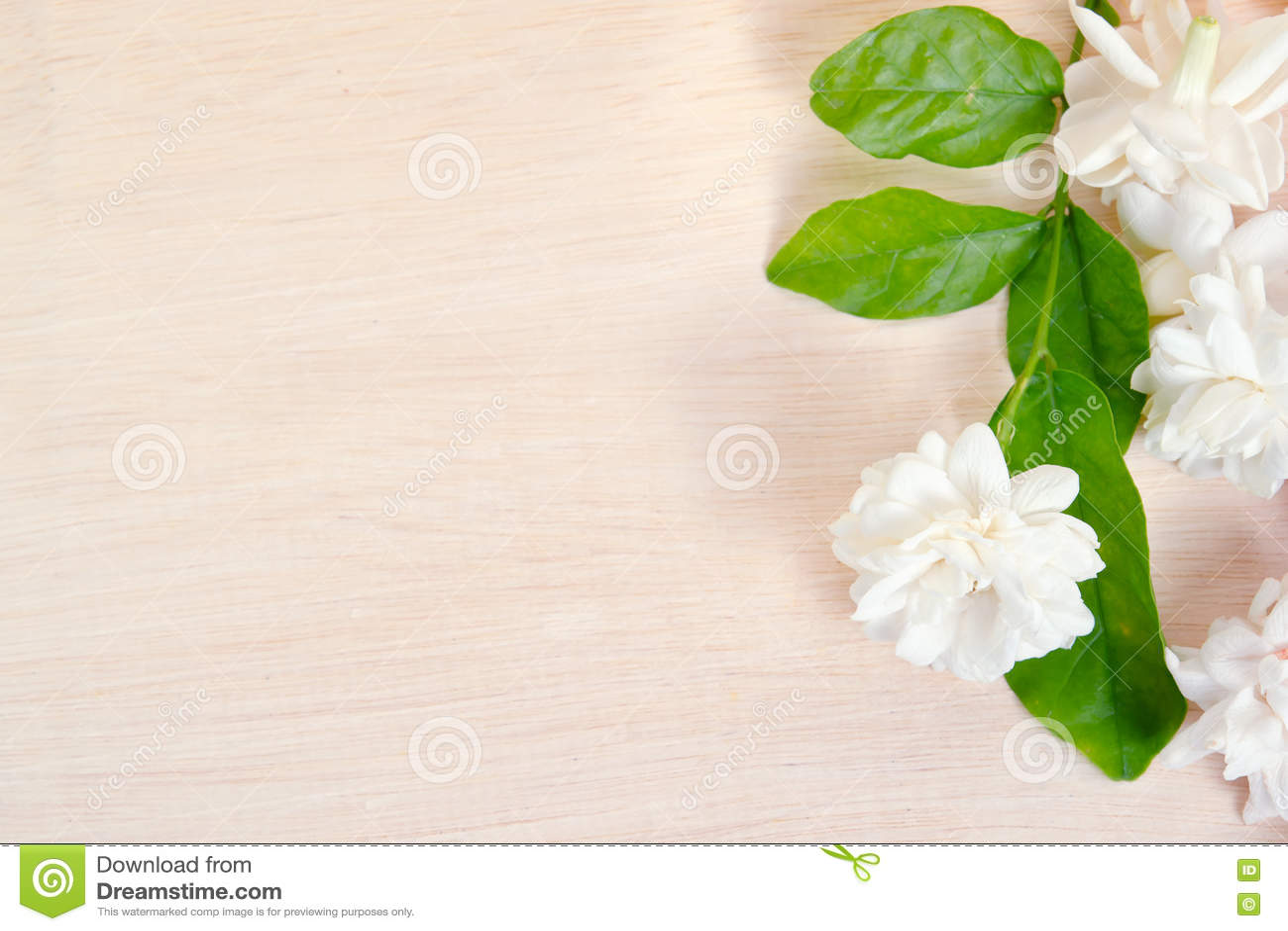 Jasmine flowers spread on wooden board background stock image jasmine flowers spread on wooden board background izmirmasajfo Gallery