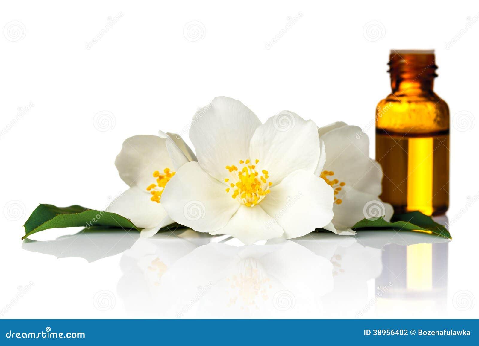 Jasmine Oil Stock Photo Image Of Nature Essential Background