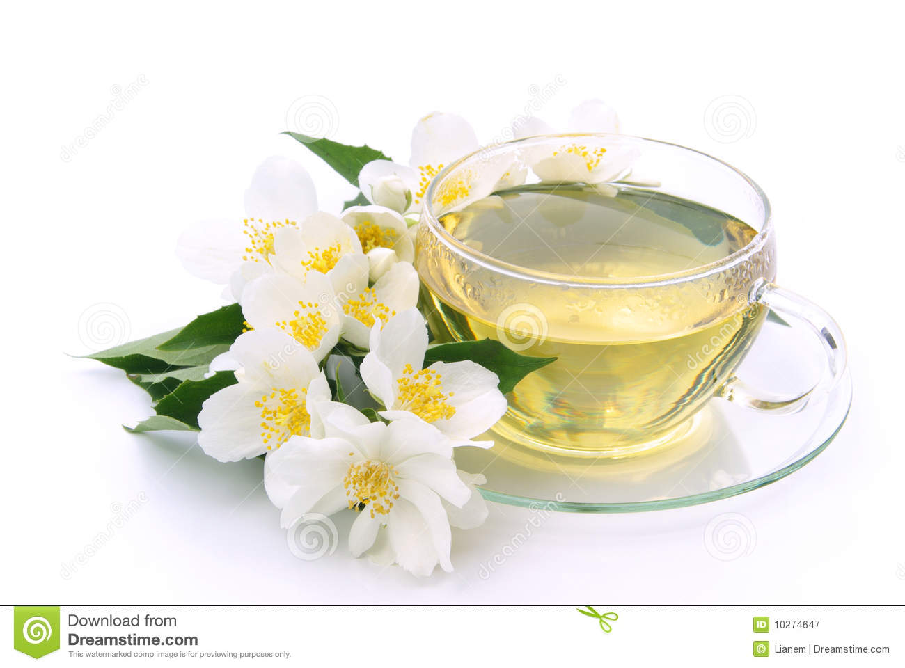 Jasmine Tea Stock Image Image Of Bunch Herb Infusion 10274647