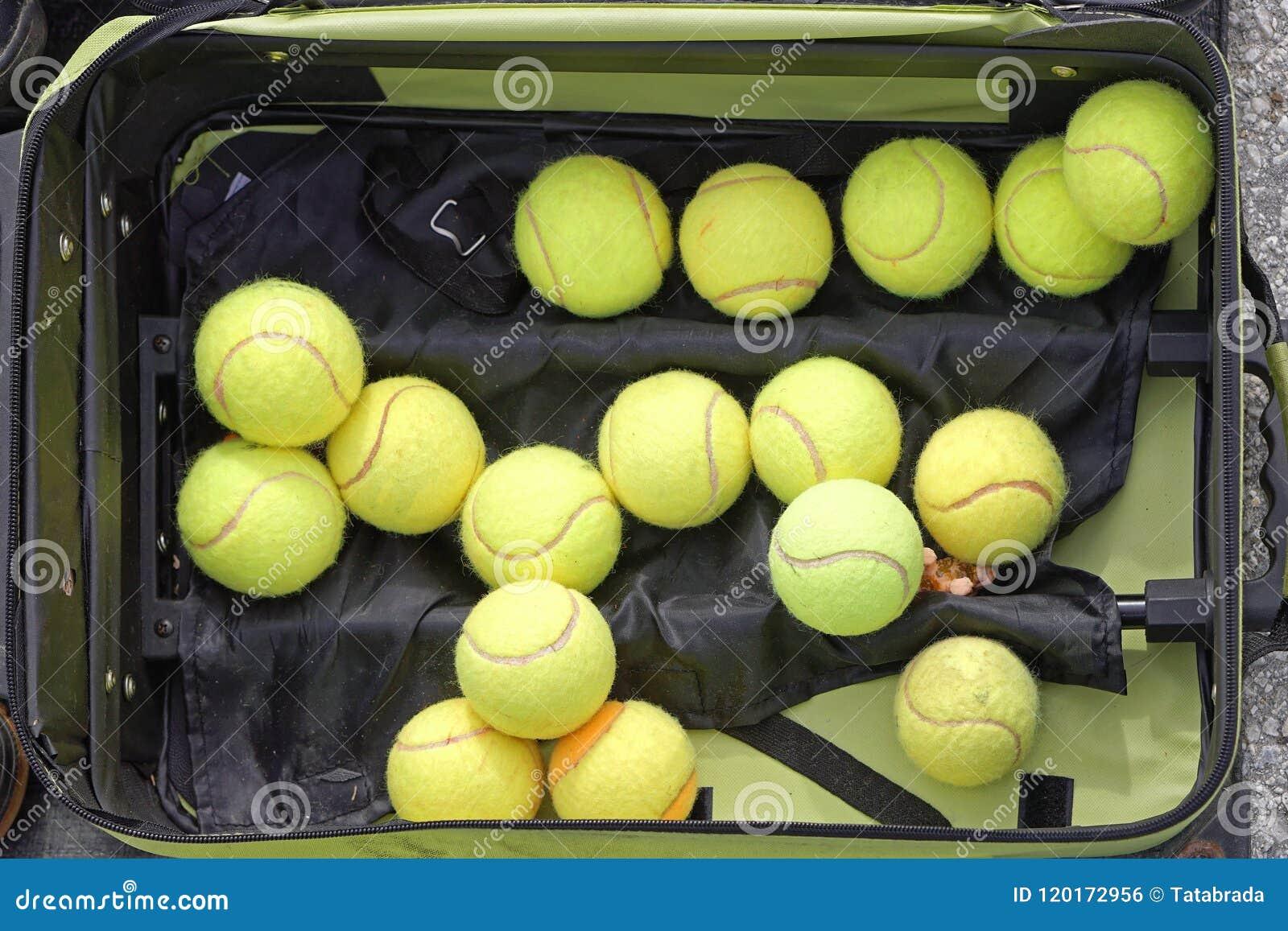 - jasne, pochodzenie jaj zielony jednorodny jedna położyć większy tenis