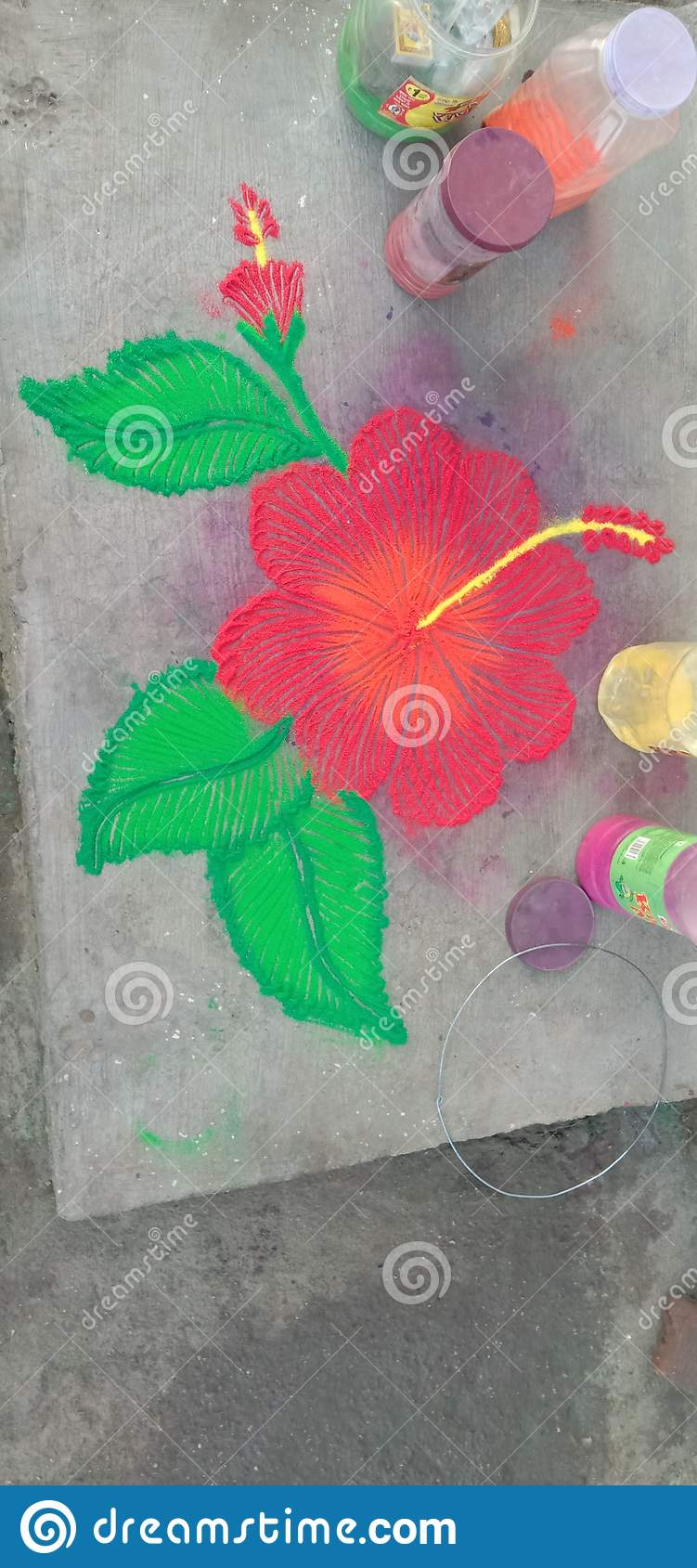 Jaswand Stock Photo Image Of Flowers Rangoli Jaswand 168285734