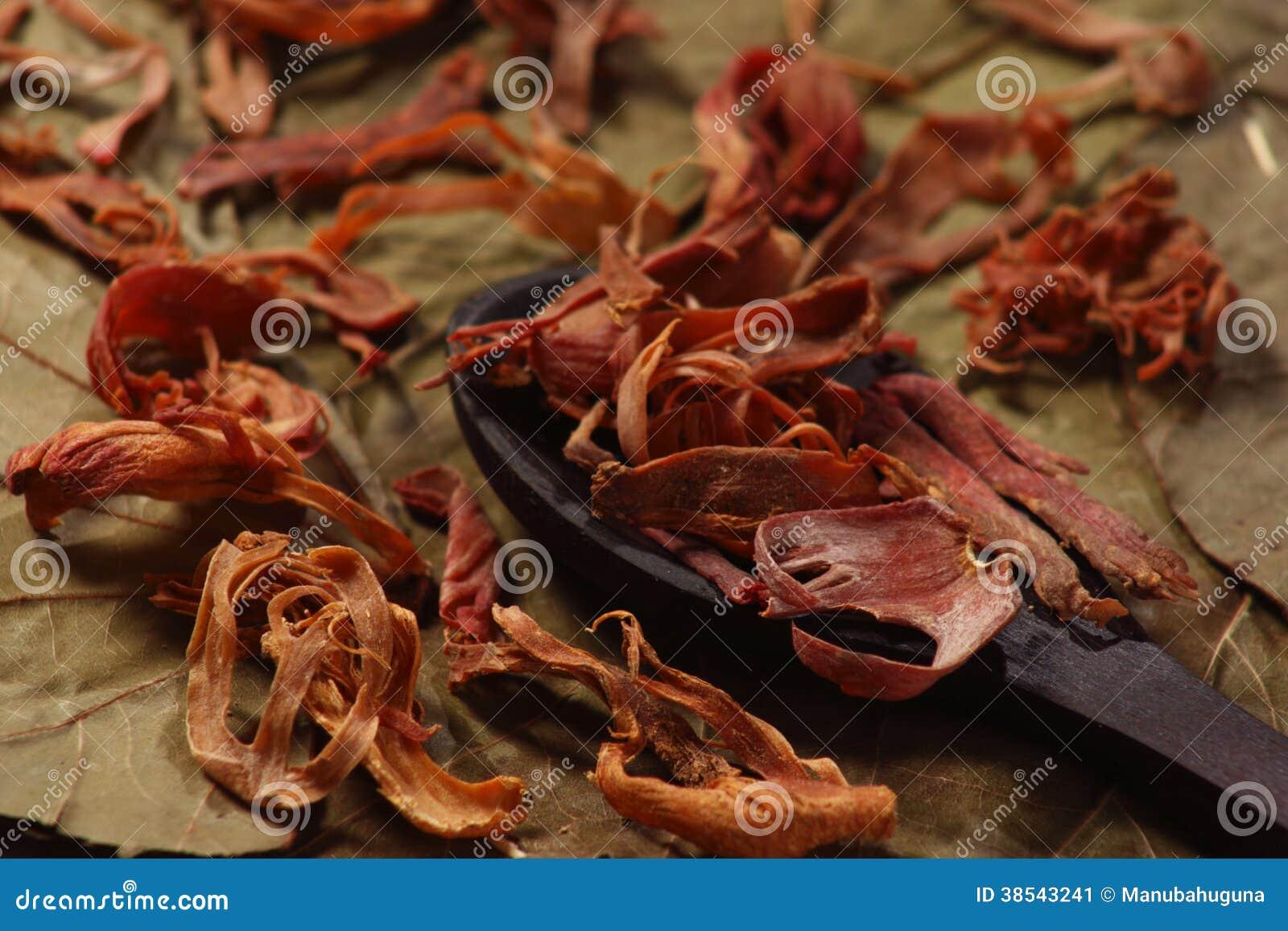 Javitri ou noix de muscade image stock image du pices - Noix de muscade cuisine ...