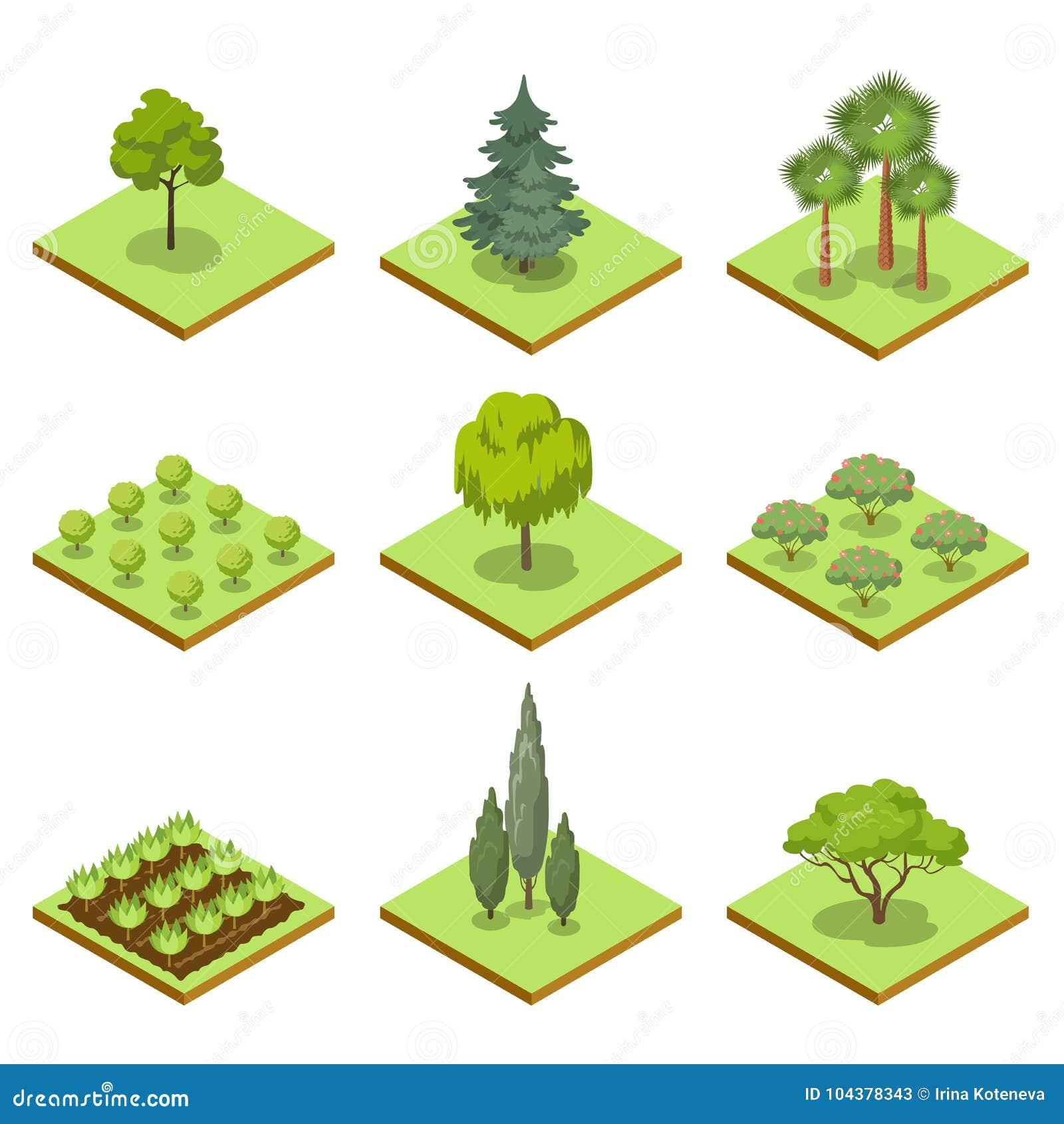 Jawnego parka dekoracyjnych drzew isometric 3D set