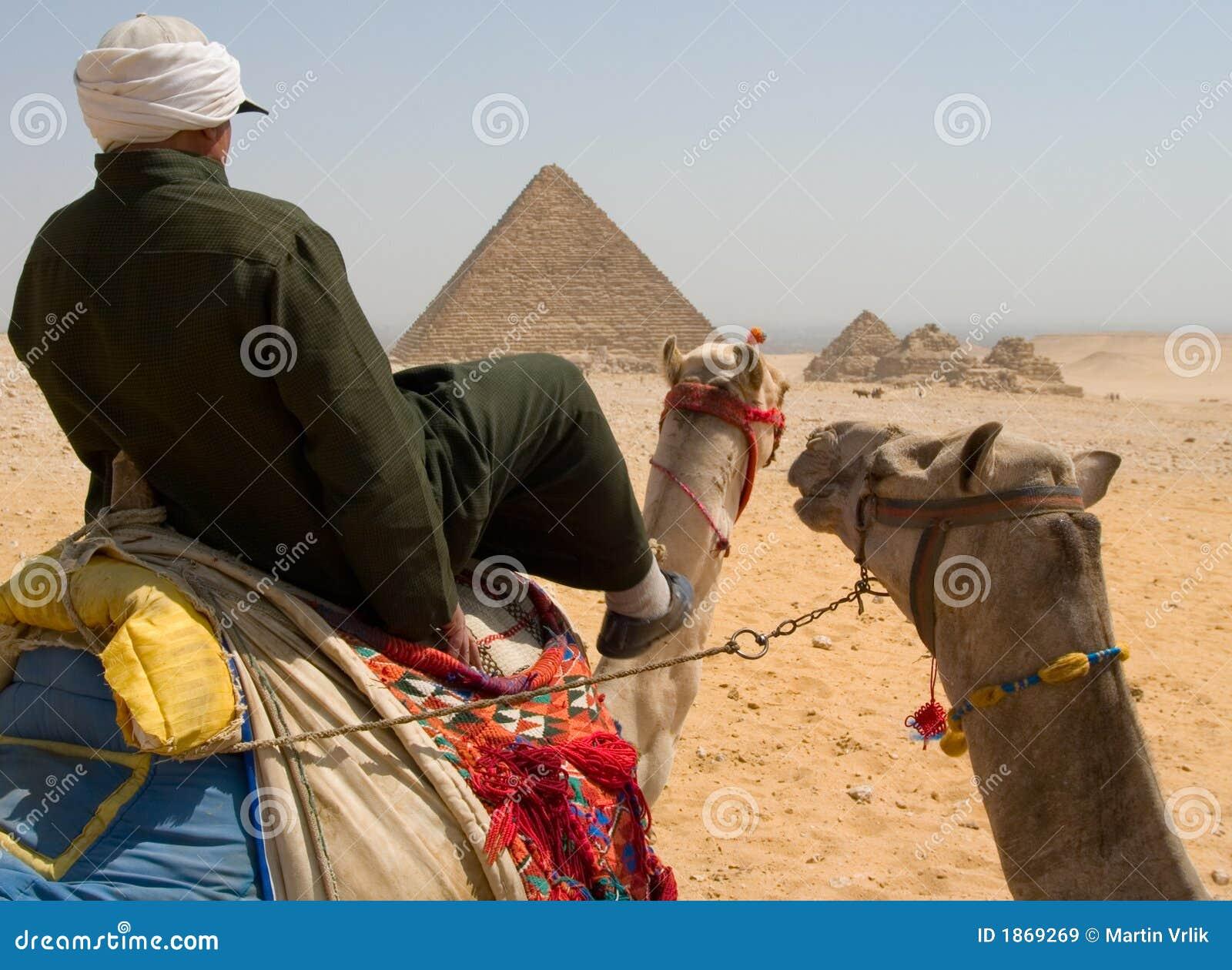Jeździec wielbłądów