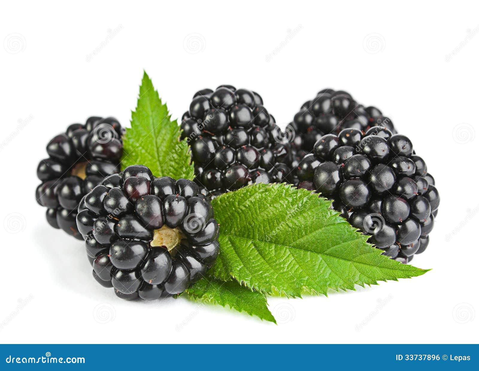 Jeżynowa owoc
