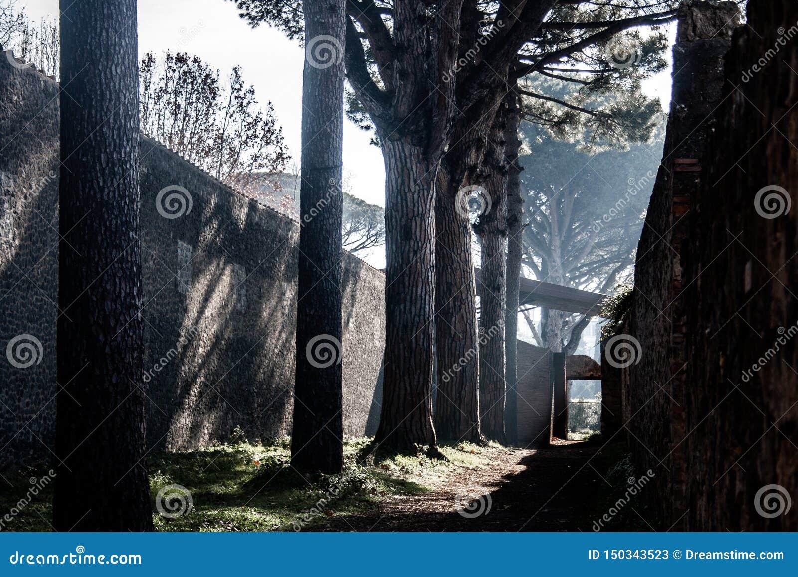 Jeden ścieżki Pompeii