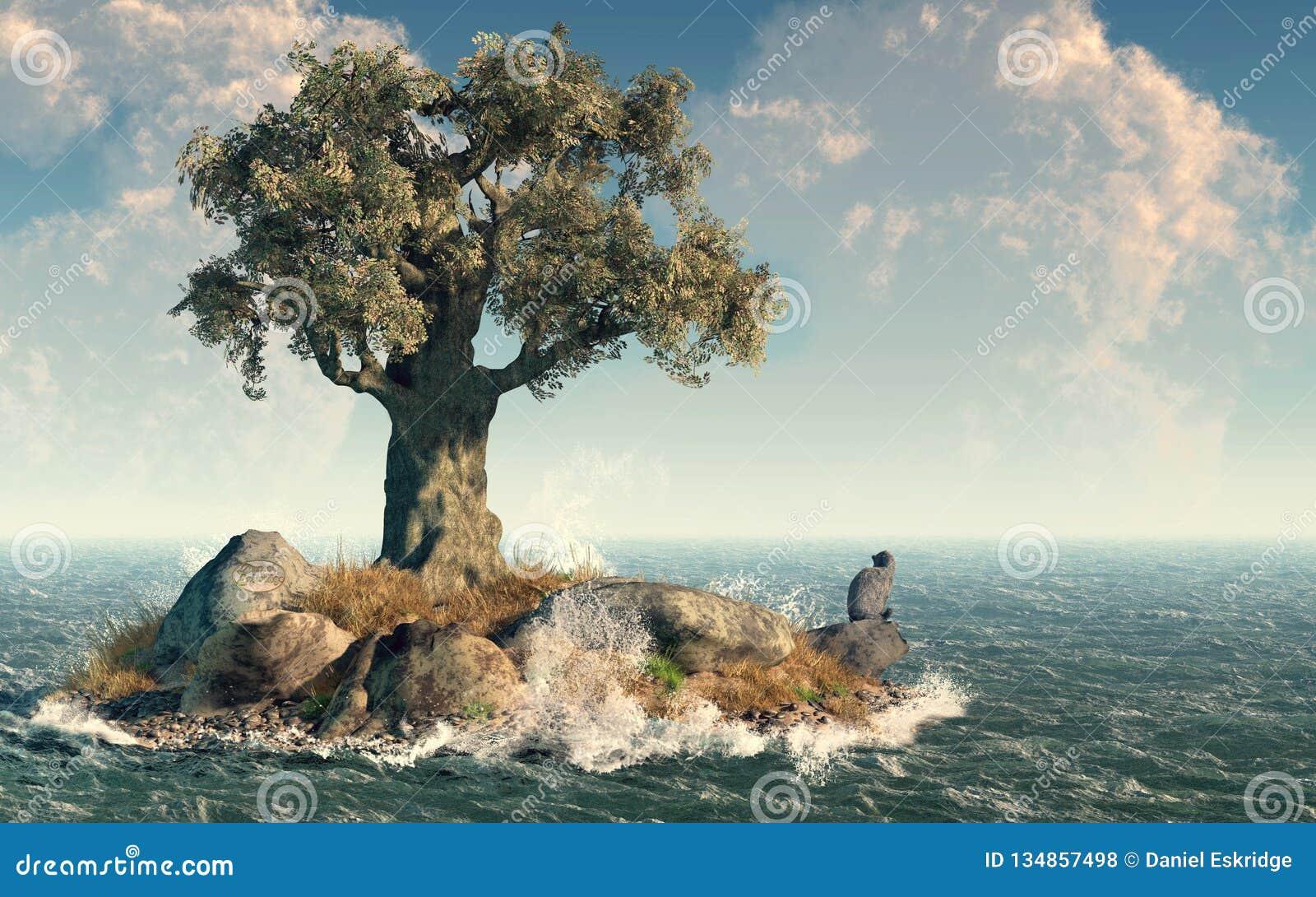 Jeden drzewna wyspa