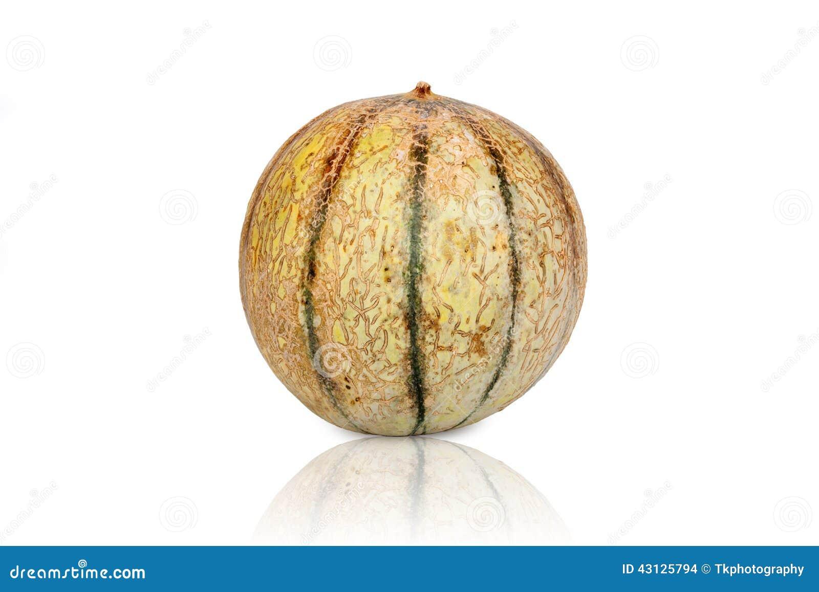 Jeden Galia melonu kantalup