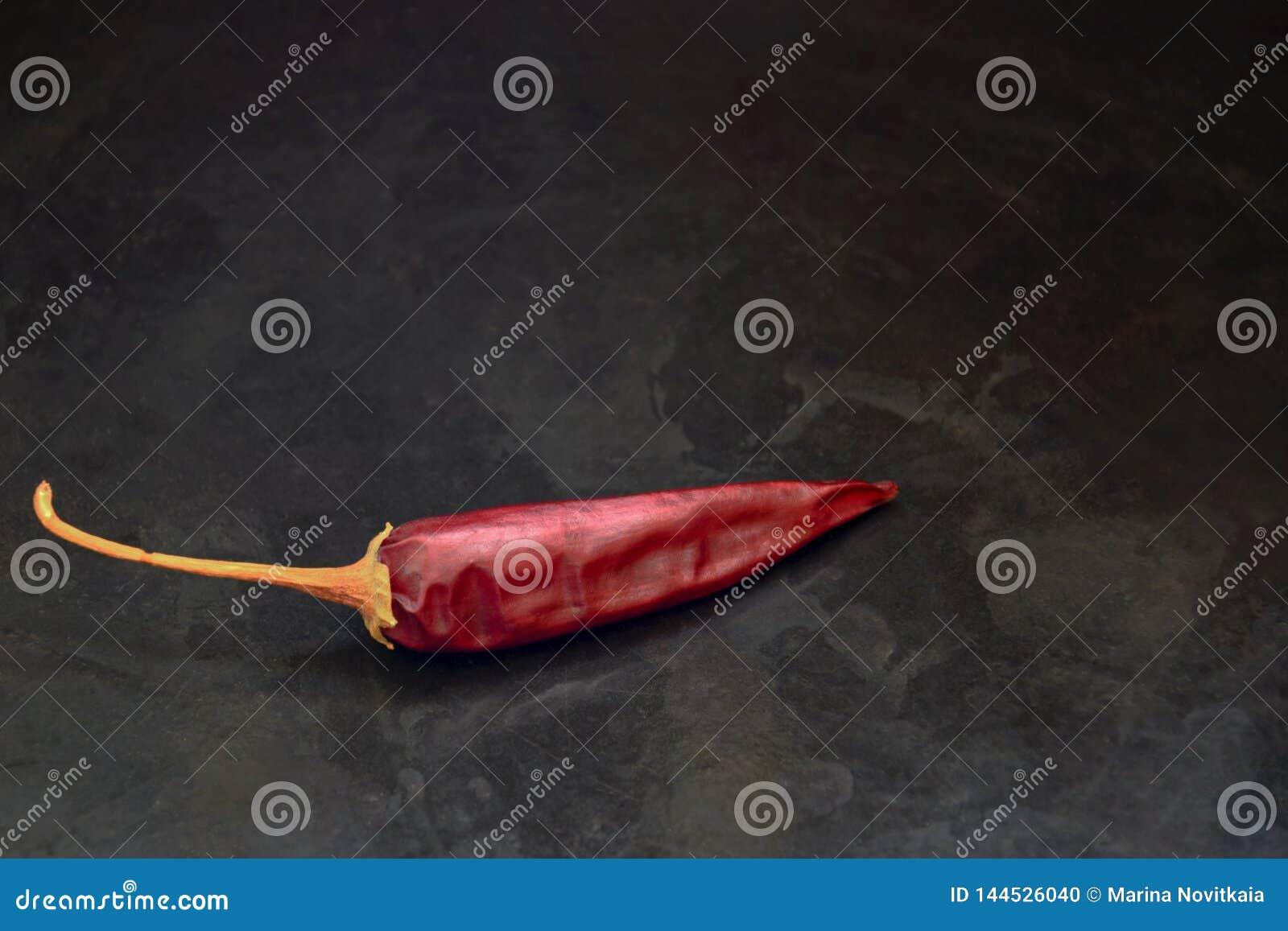 Jeden strąka gorzki czerwony pieprz na czarnym tle
