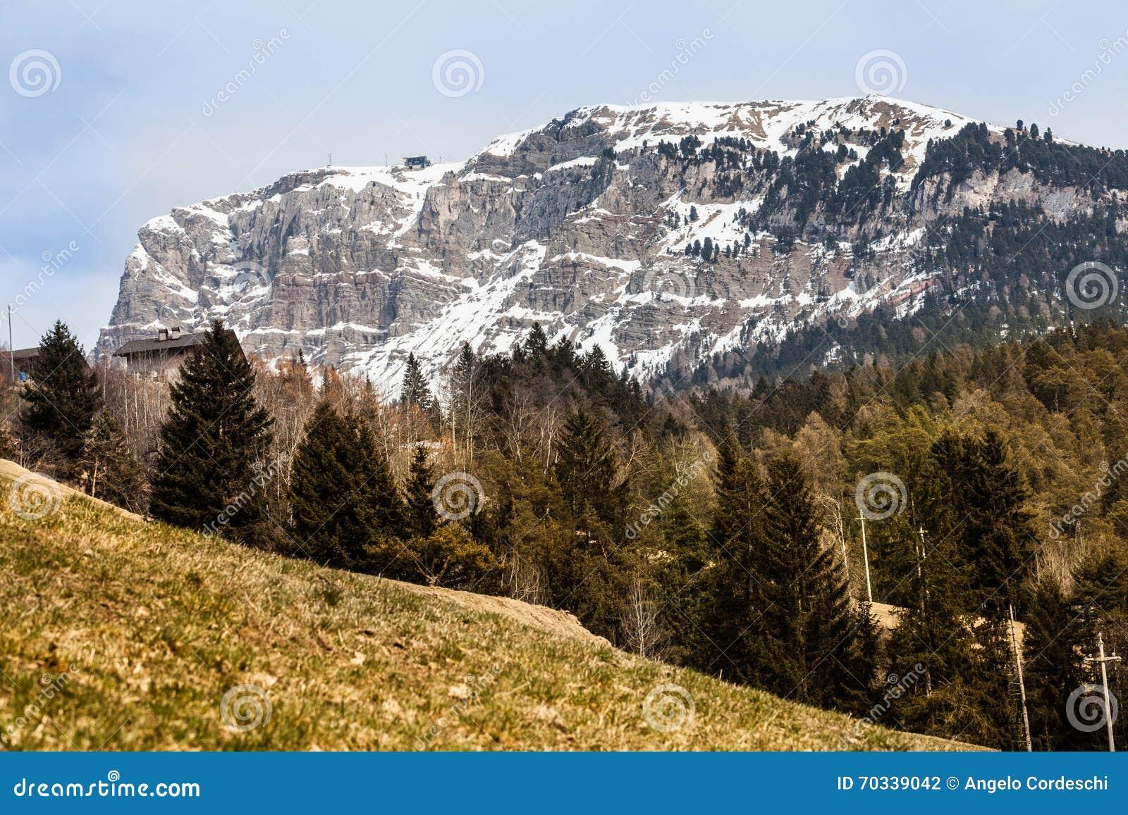Jedlinowy drewniany lasu i góry krajobraz z śniegiem