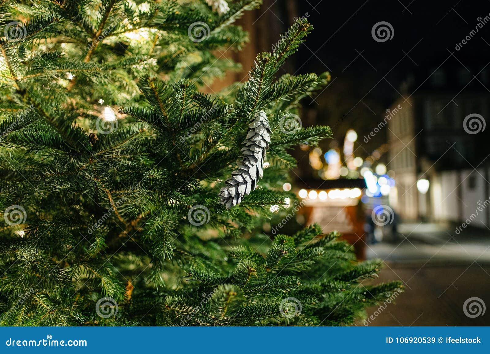 Jedlinowy drzewo w mieście z sylwetką pieszy