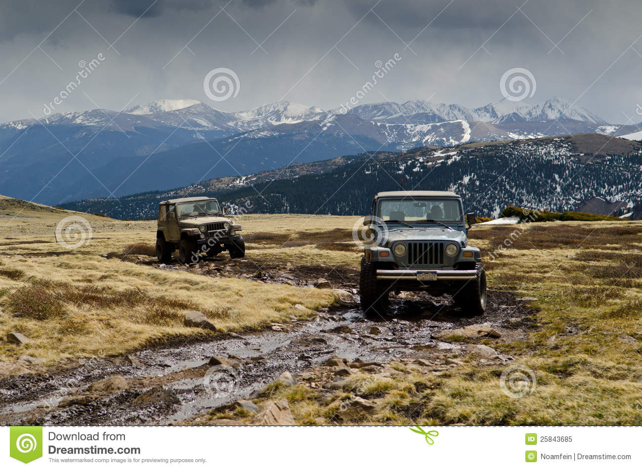 Warngler Jeeps on mountain top