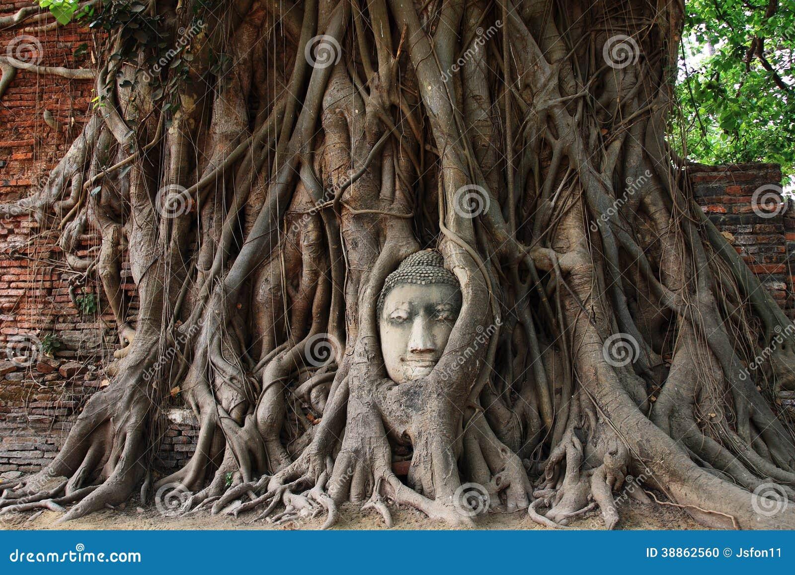 las piedras buddhist personals Free program for pdf files   .