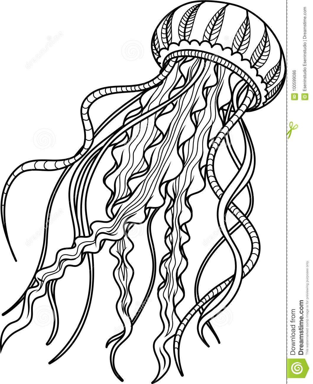 Jellyfish Antistress. Hand Drawn Sketch For Adult ...