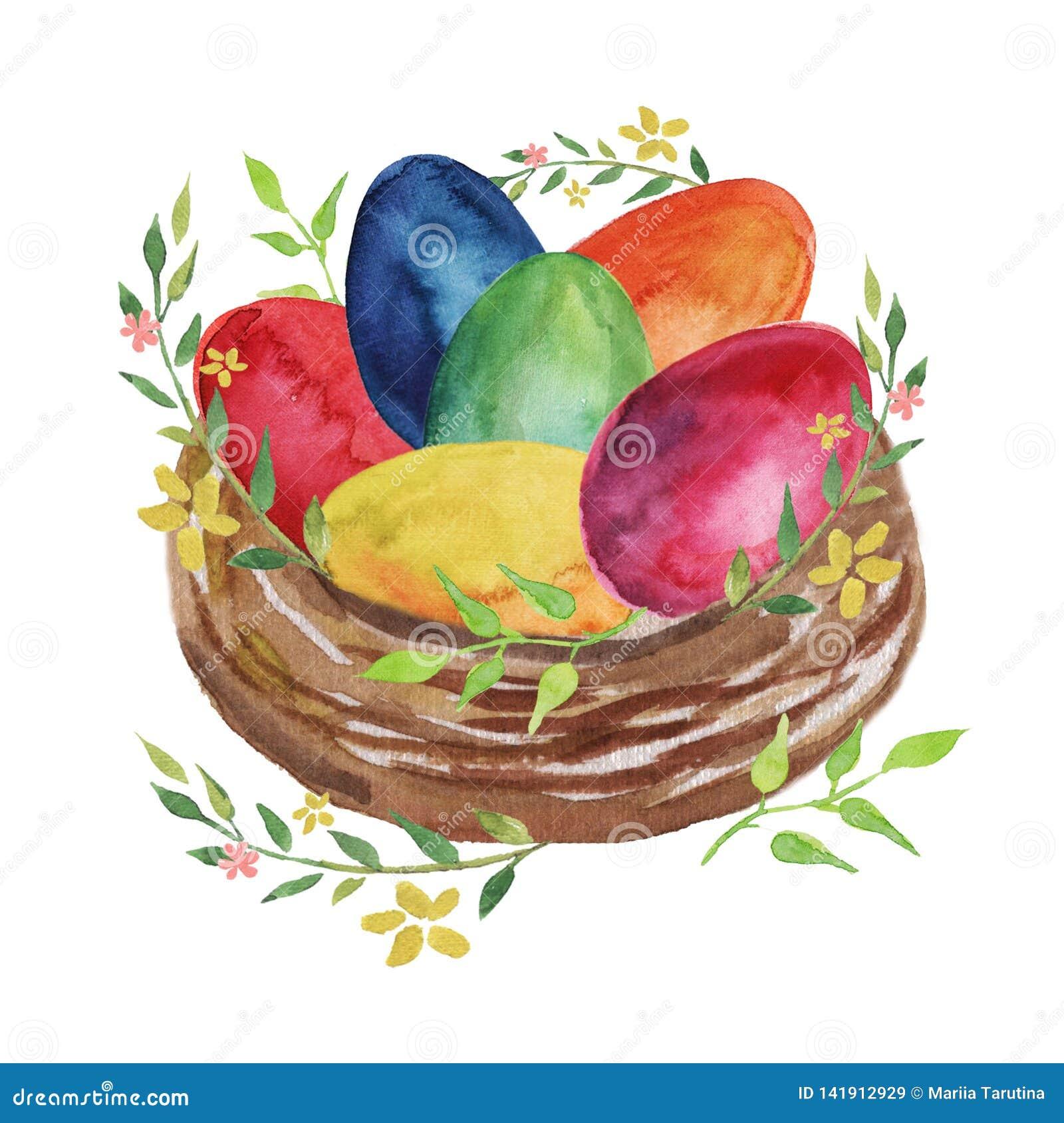 Jerarquía de Pascua con los huevos de Pascua, las flores y las plantas coloreados de la primavera en un fondo blanco