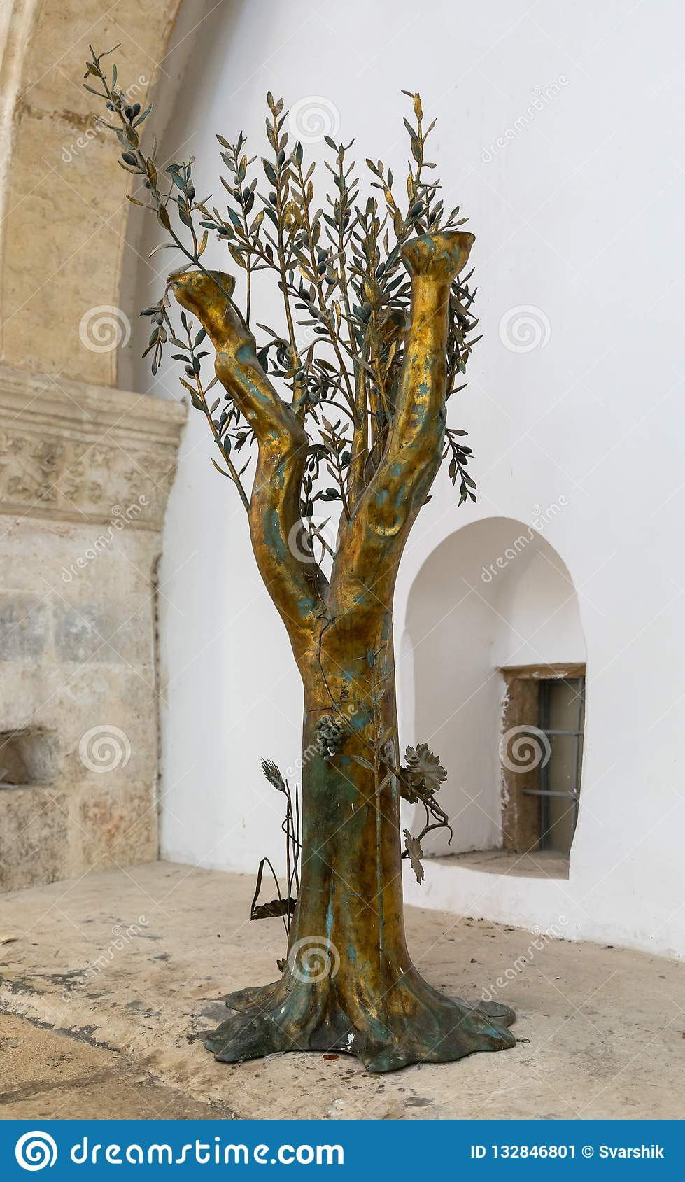 Golden Olive Tree In The Upper Room Of The Last Supper