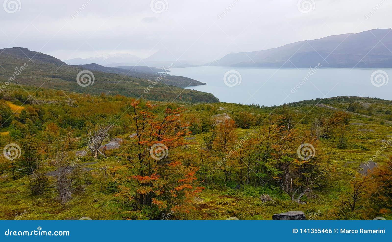 Jesień krajobraz Patagonia, Torres Del Paine park narodowy, Chile