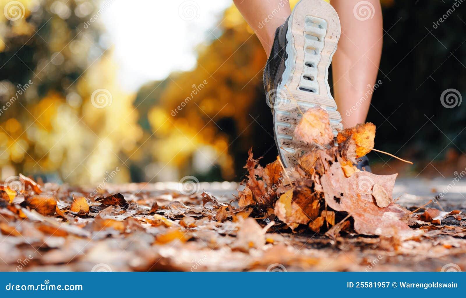 Jesień cieków biegacz