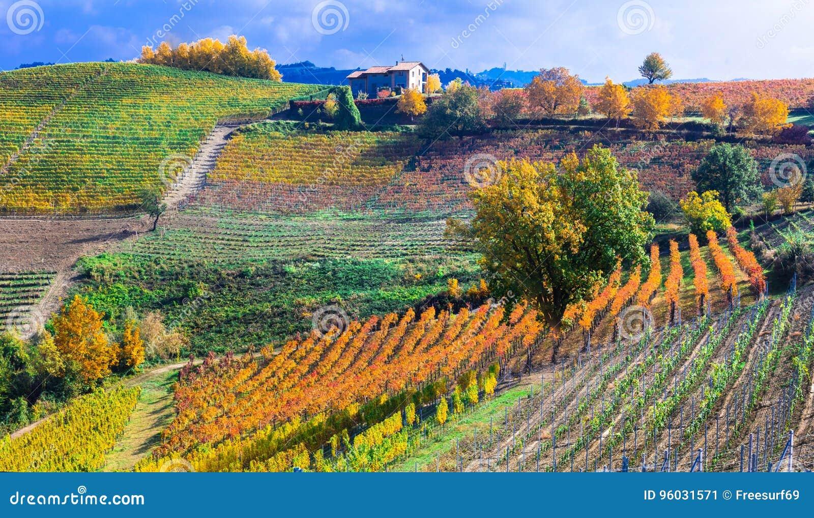 Jesień krajobraz winnicy i sceniczna wieś Piemonte,