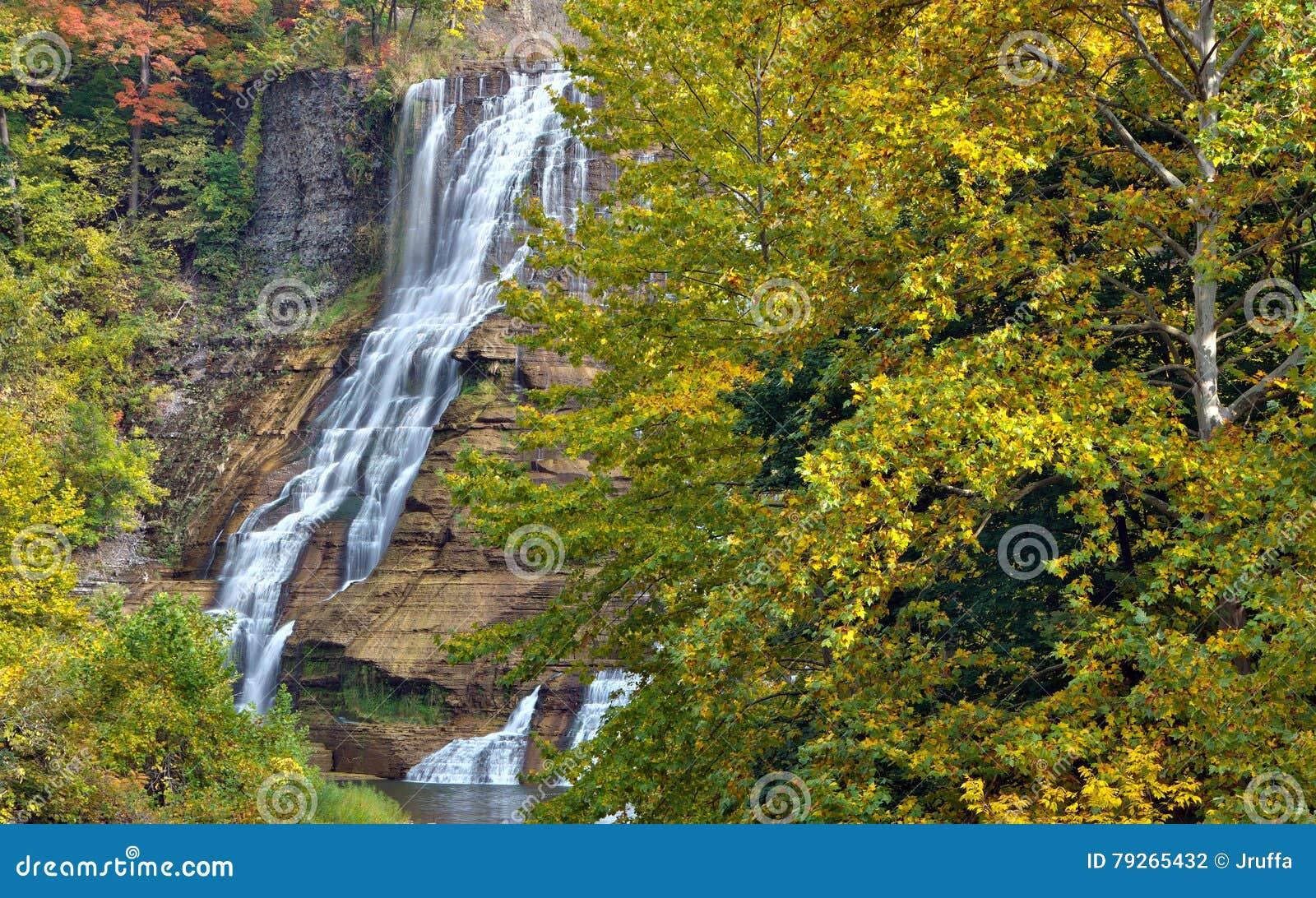 Jesień liście przy Ithaca spadają w wiejskim Nowy Jork