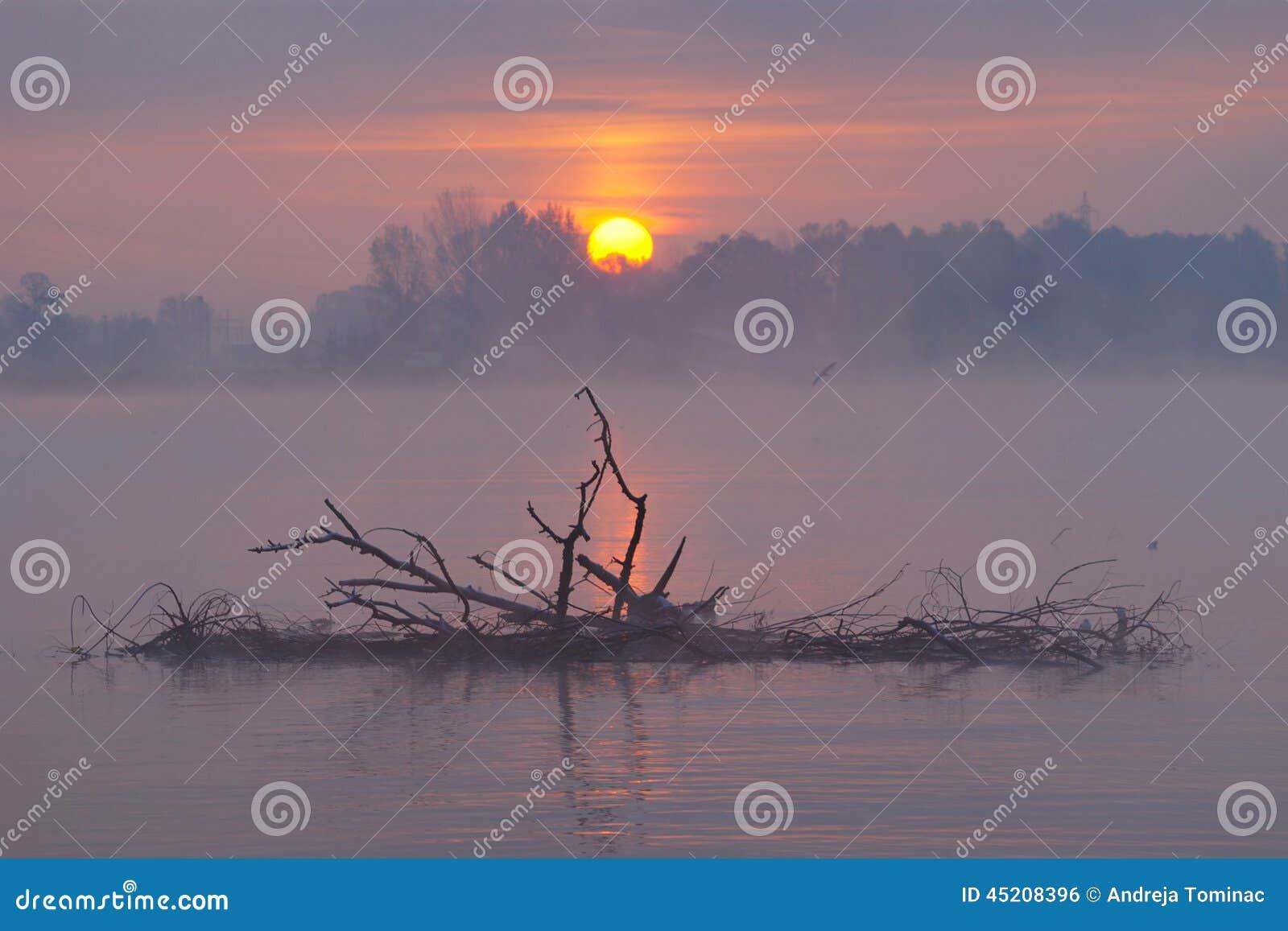 Jesień mglisty krajobrazowy