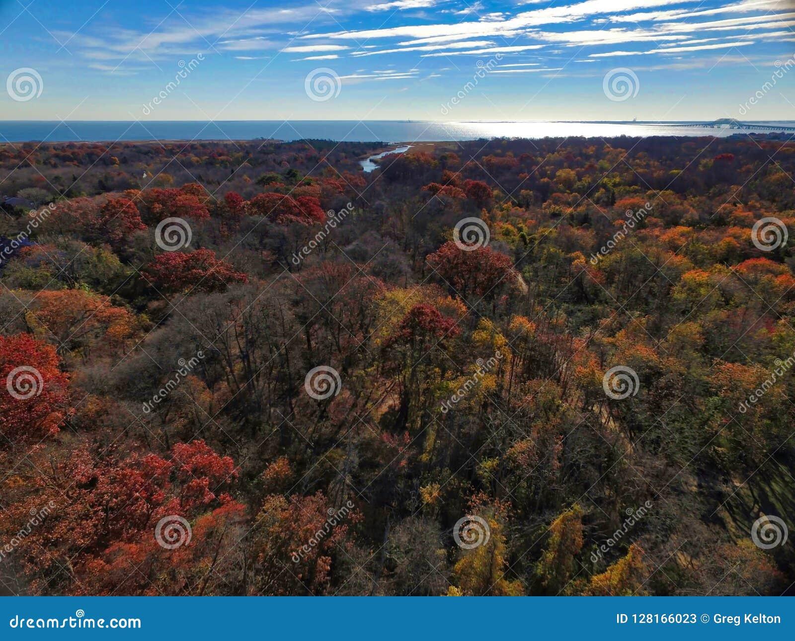 Jesień na Long Island trutniem