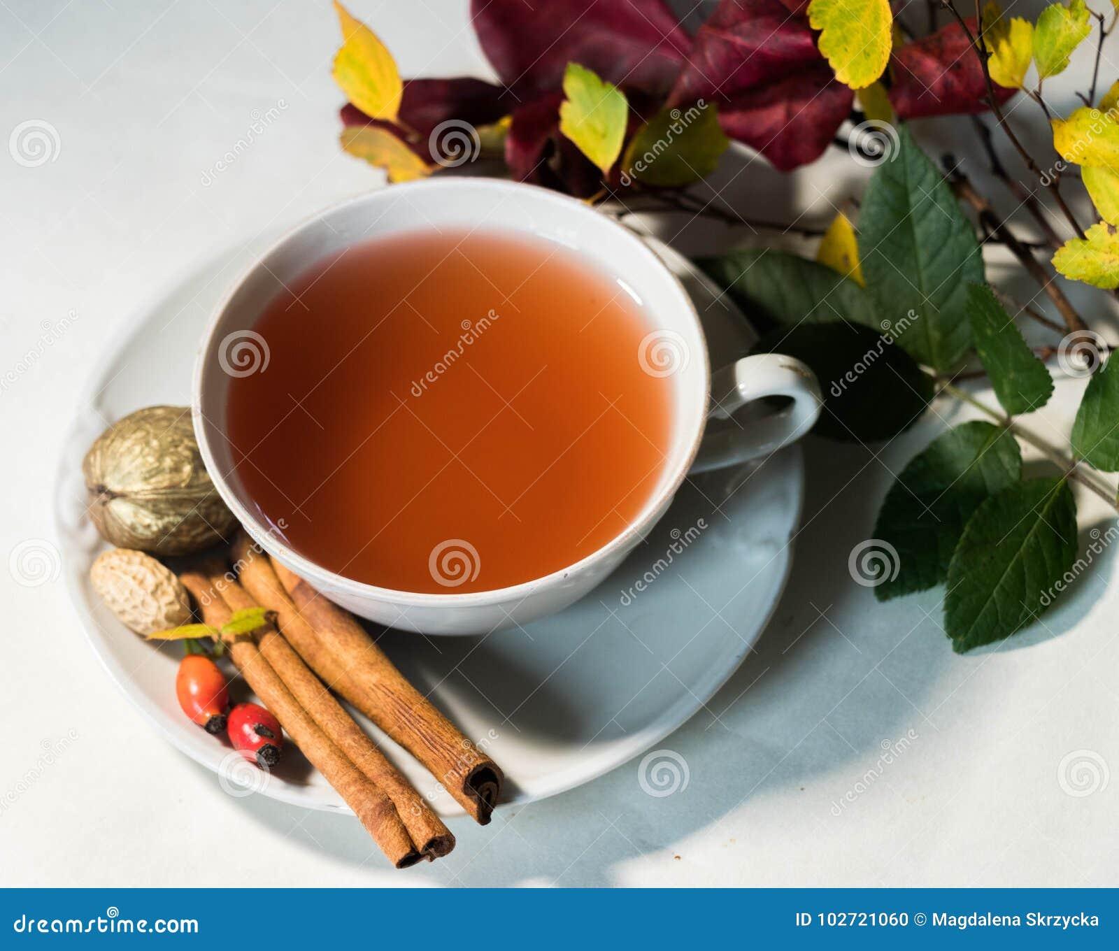 Jesień napój z owoc rezerwuje nastrój i uspokaja