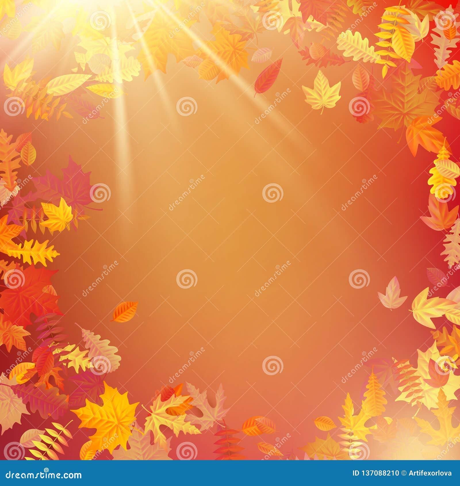 Jesień szablonu układ dekoruje z liśćmi 10 eps