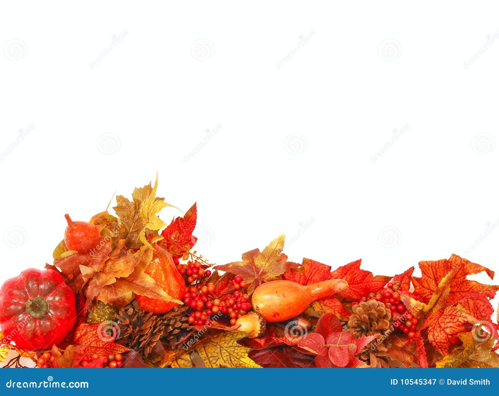 Jesień tła ulistnienie