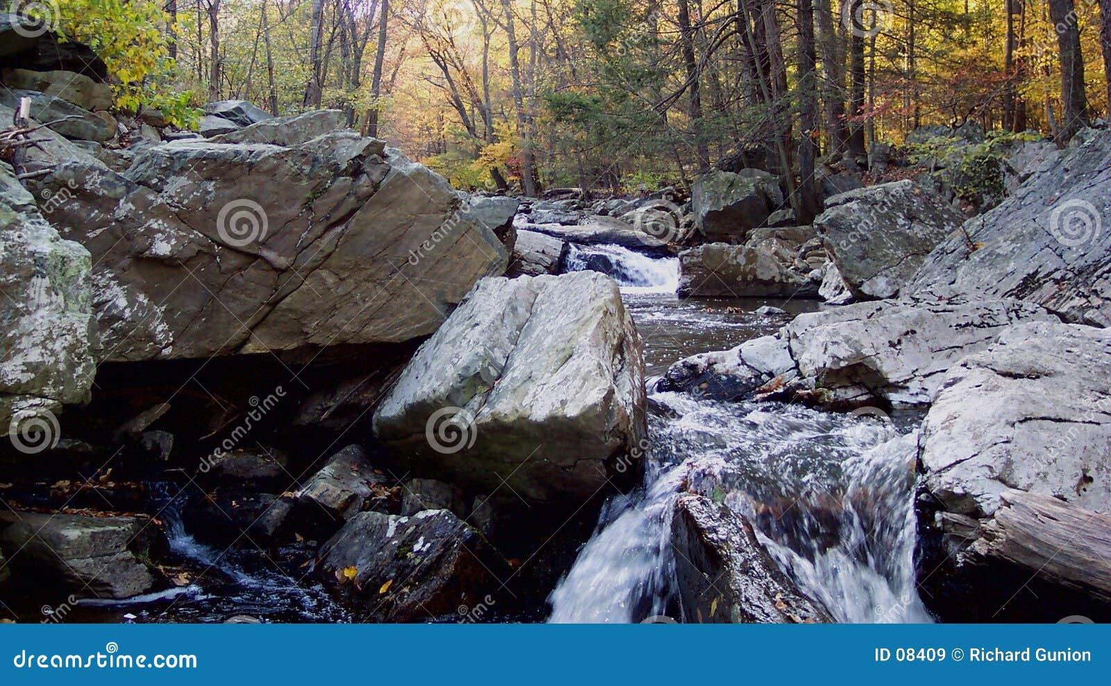 Jesienią creek wielki polowania