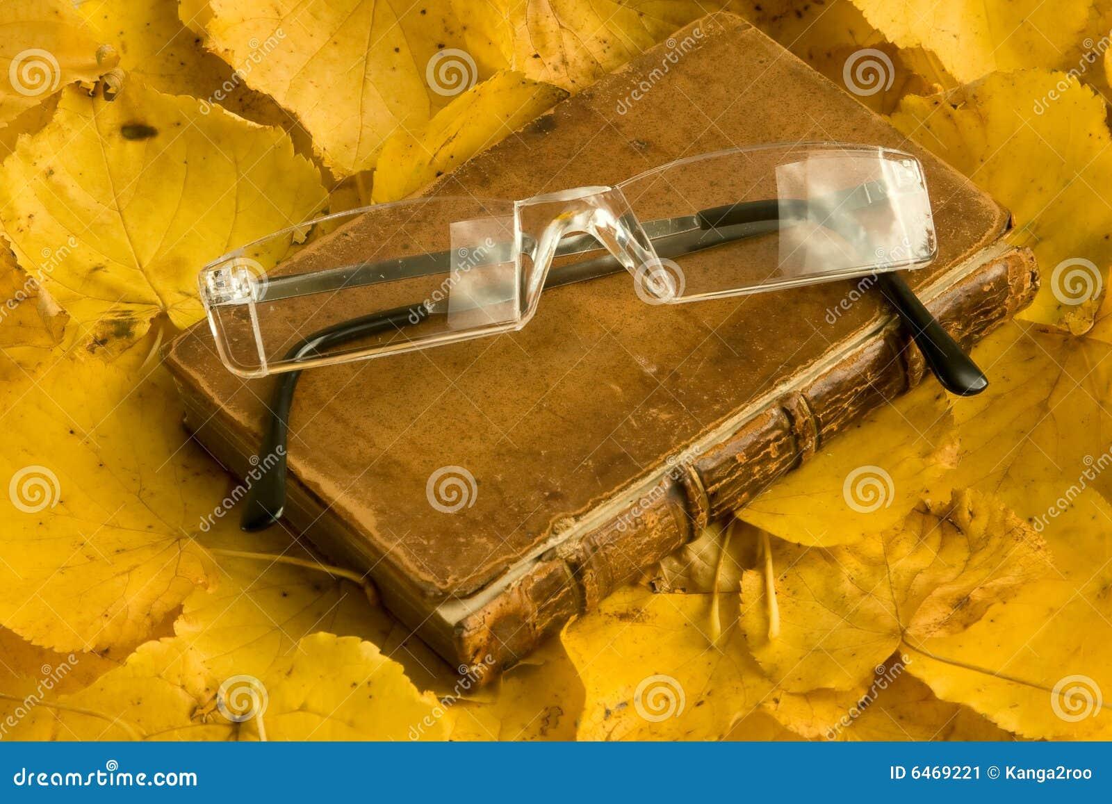 Jesienią książkowi spectecles